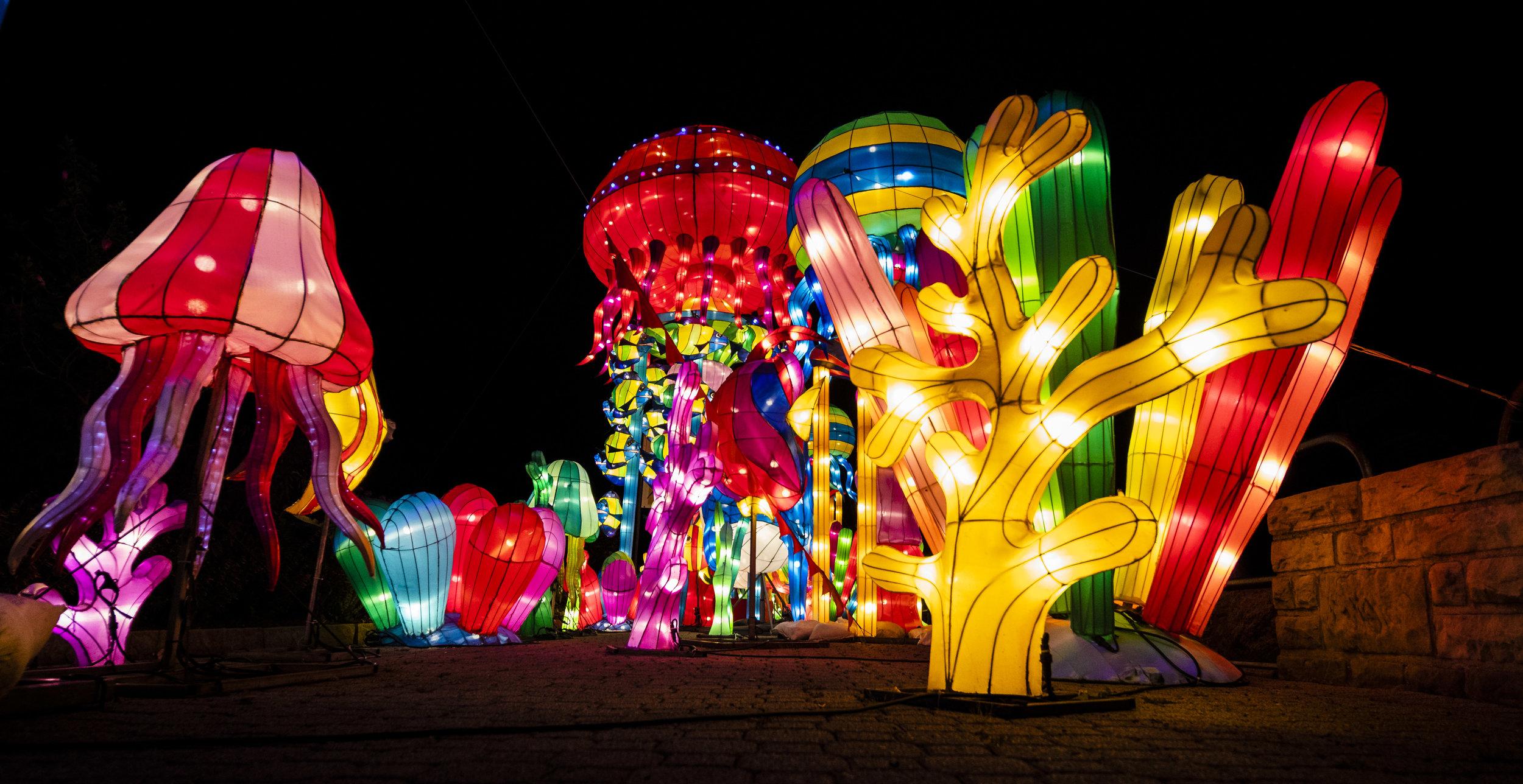 Asian Lanterns38.jpg