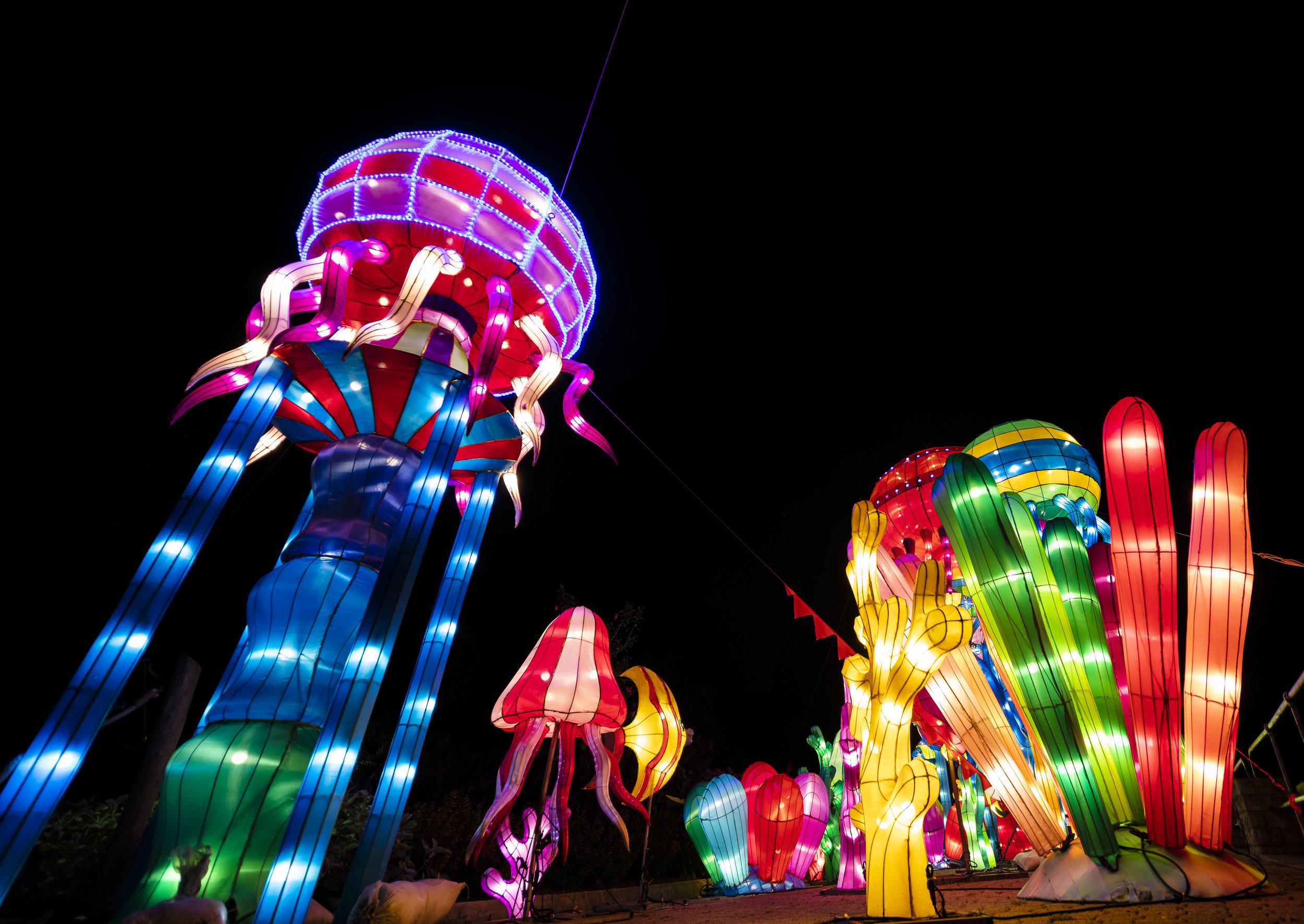 Asian Lanterns39.jpg
