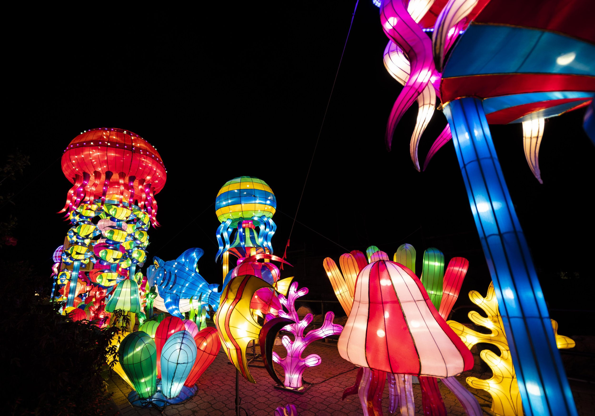 Asian Lanterns40.jpg