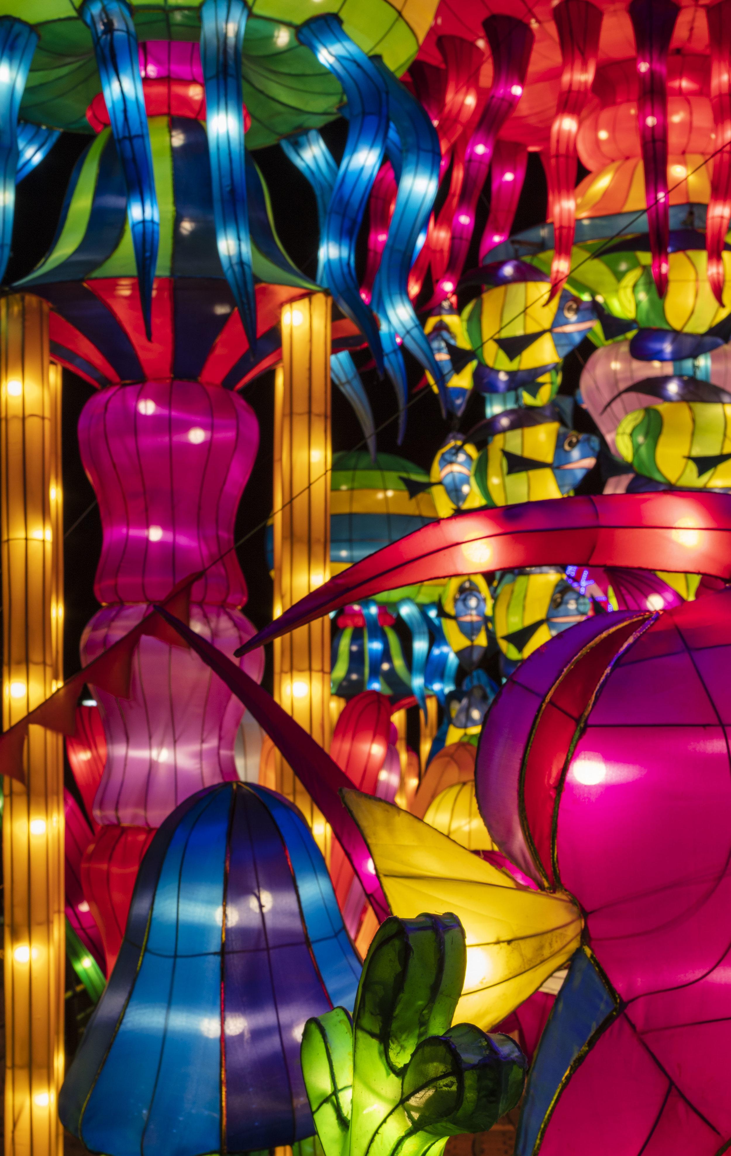 Asian Lanterns41.jpg