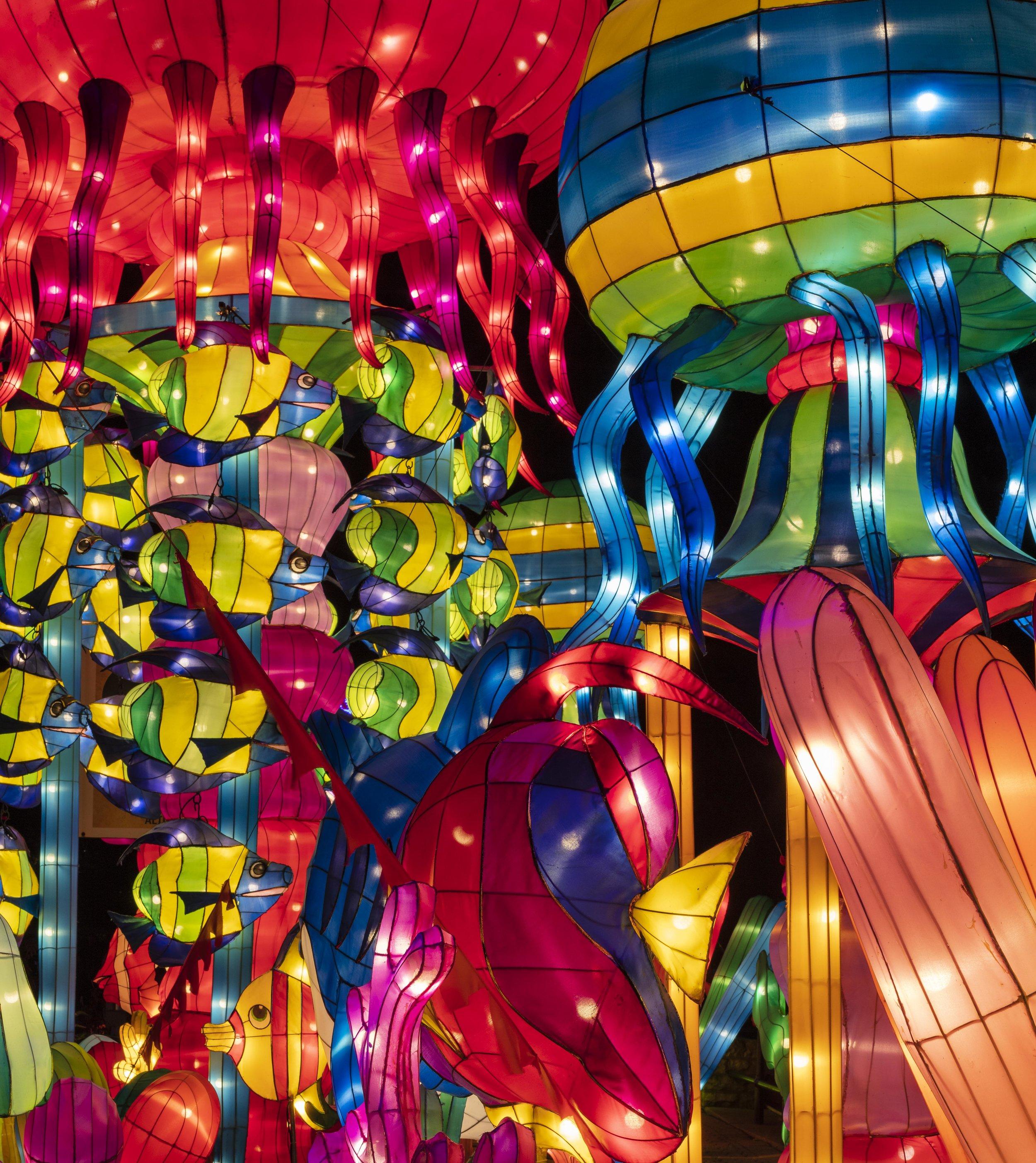Asian Lanterns42.jpg