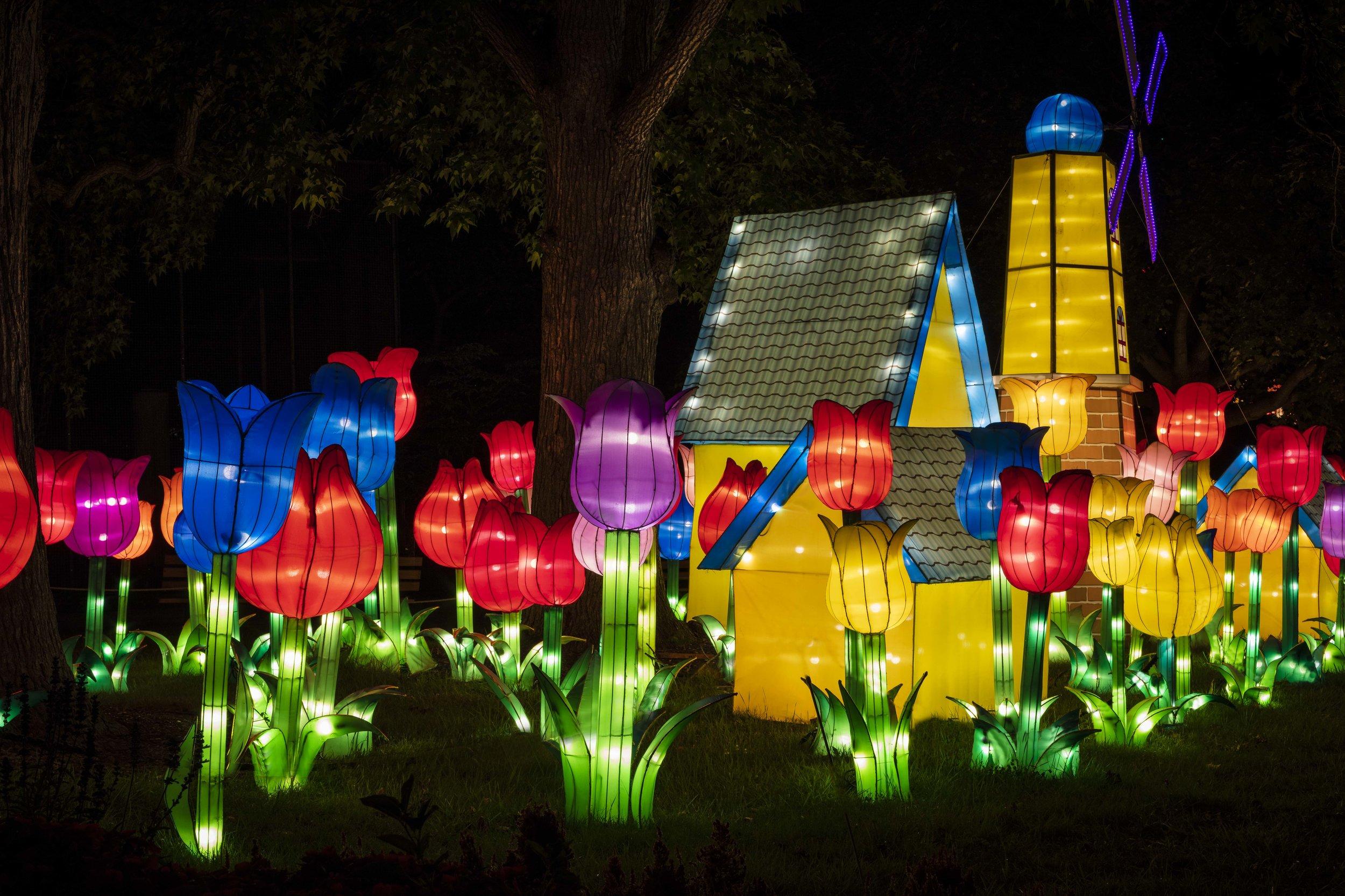 Asian Lanterns45.jpg
