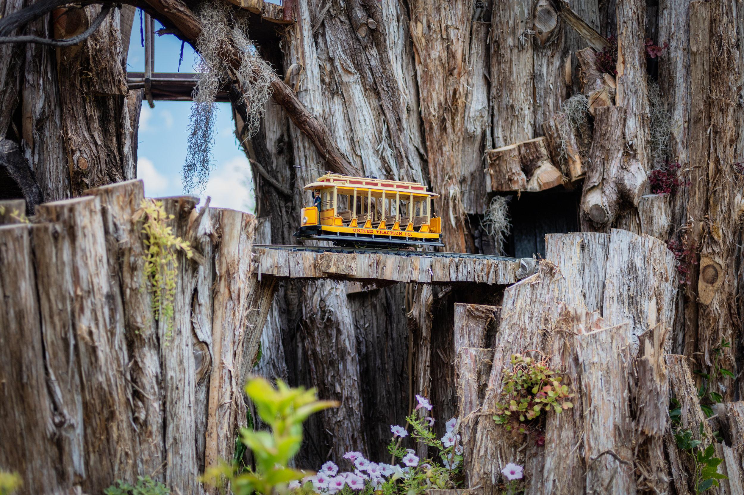 woodland express-10.jpg