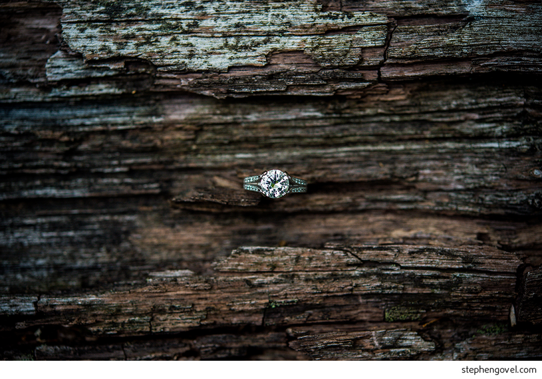 stephengovelhudsonvalleynywedding1.jpg