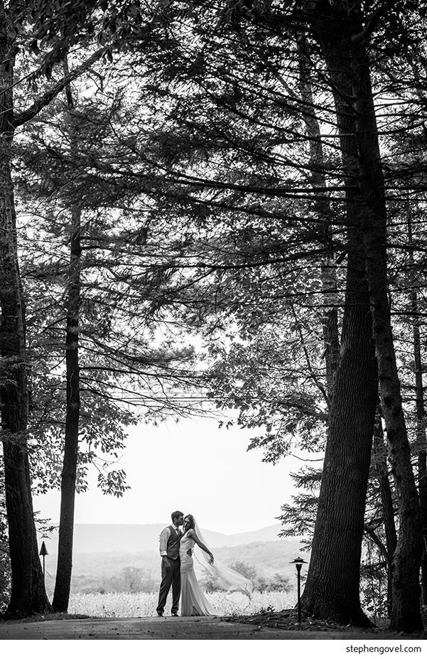 backyardwedding01.jpg