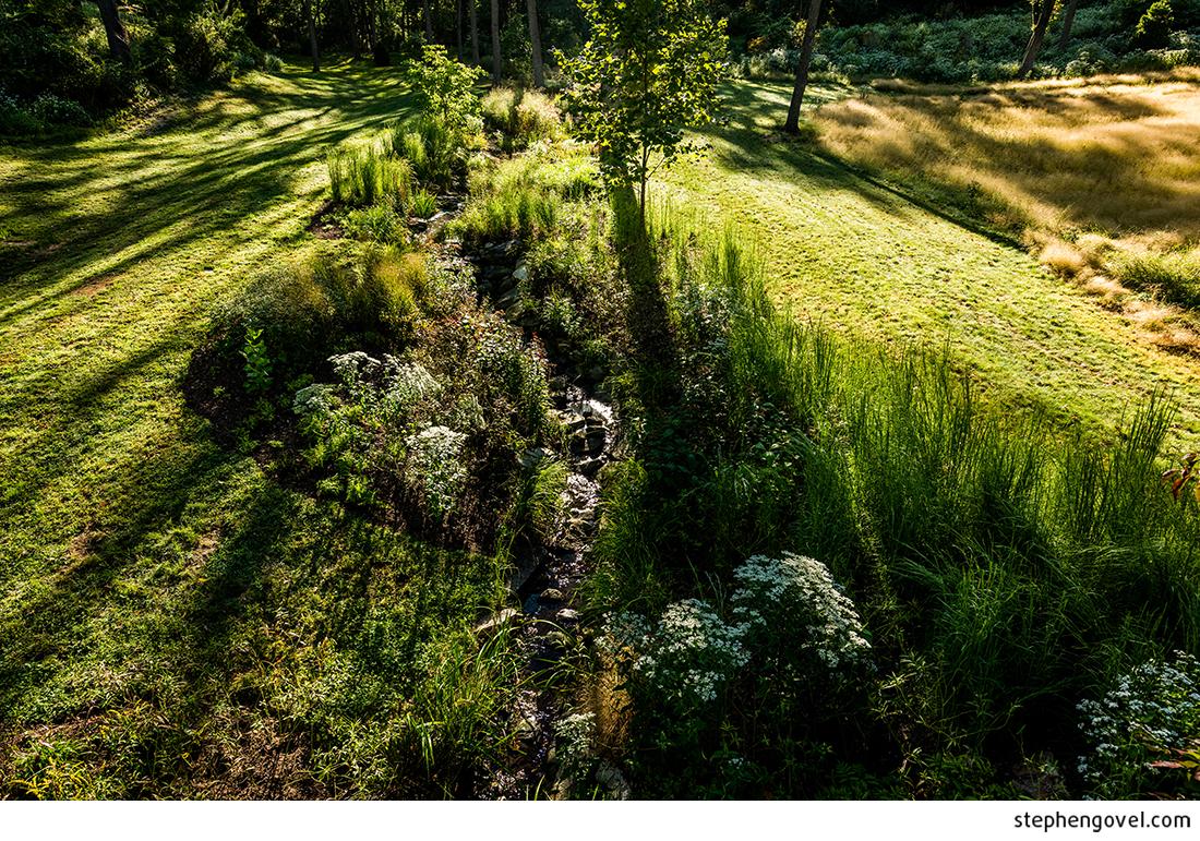 landscapearchitectphiladelphia06.jpg