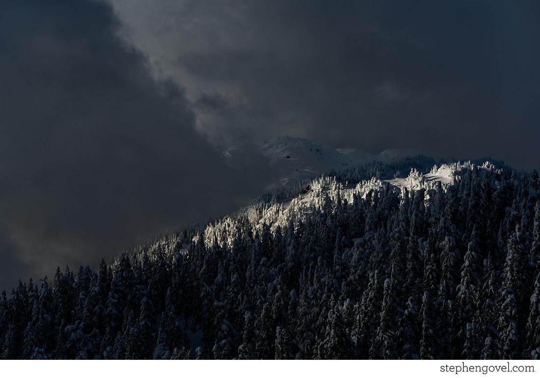 snowmobilecompanywhistler02.jpg