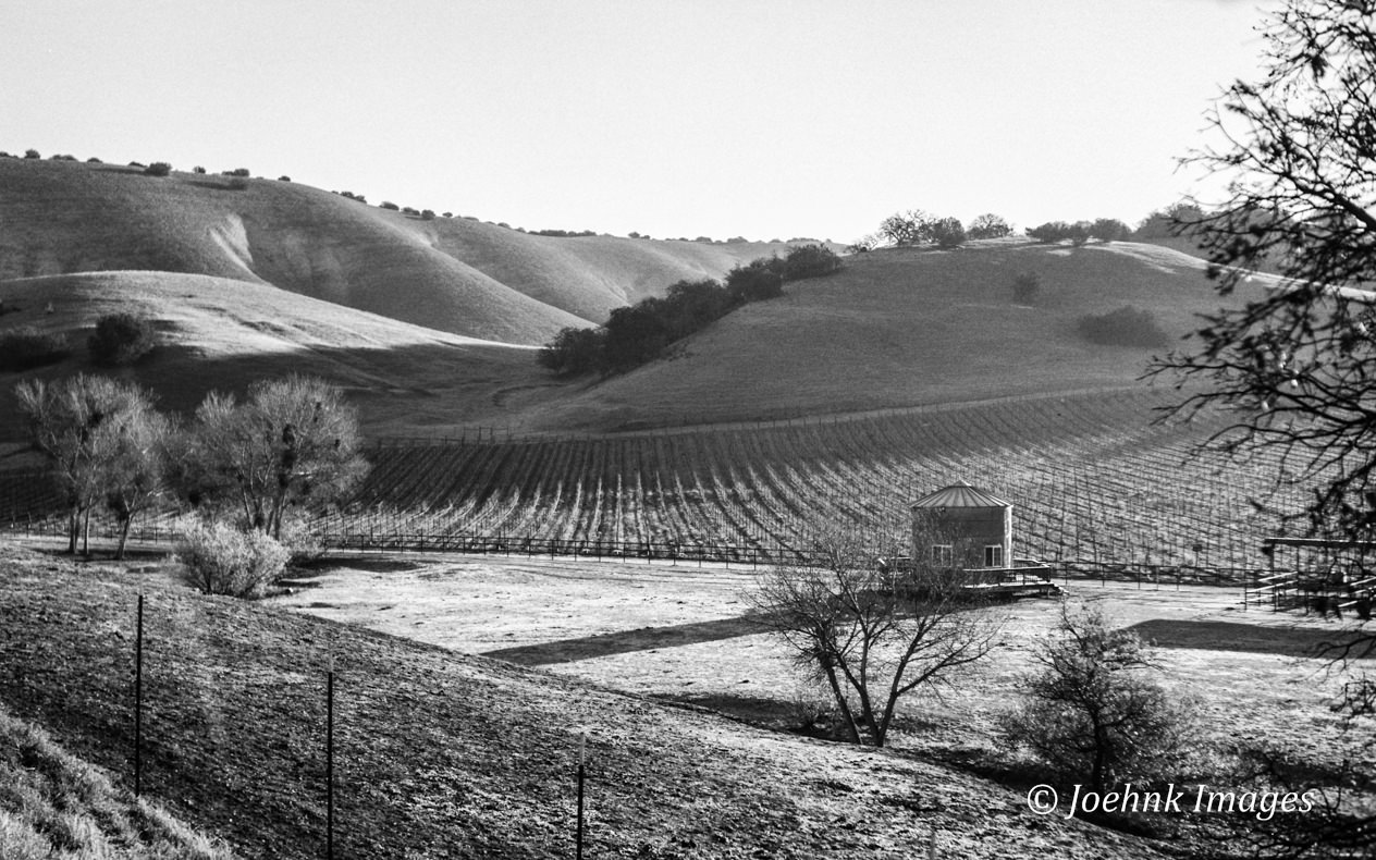 Central Valley #22