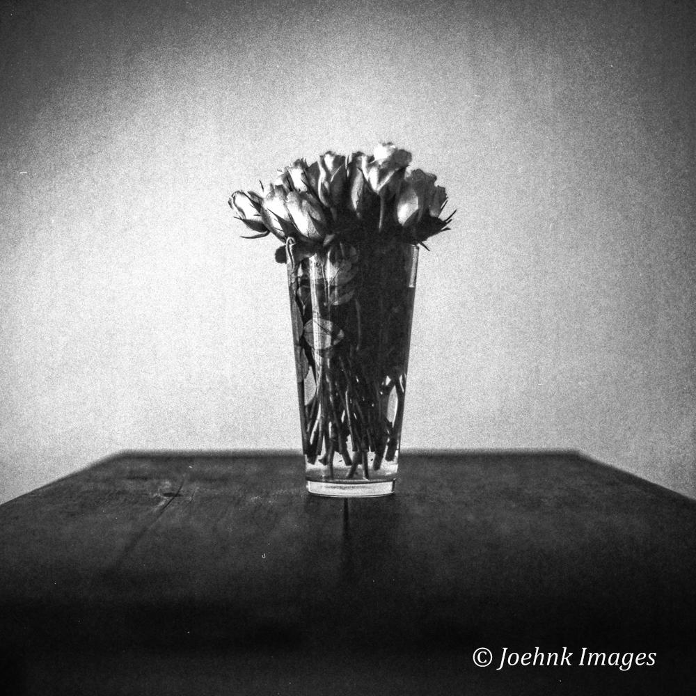 Flowers Past #10