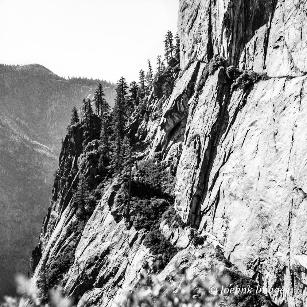 Yosemite #36