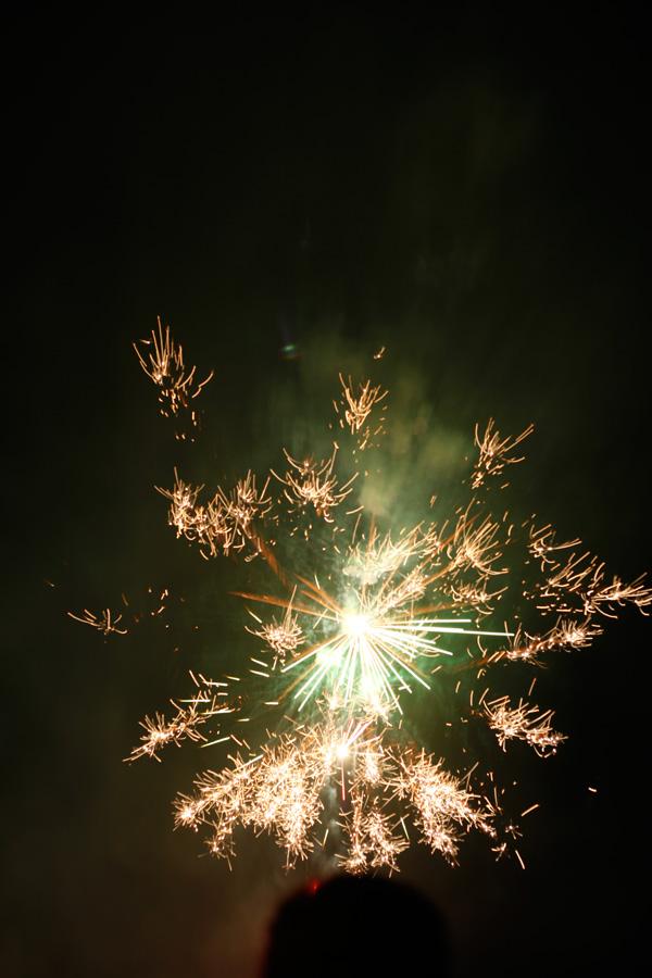 Festa-2013-LT-0860.jpg