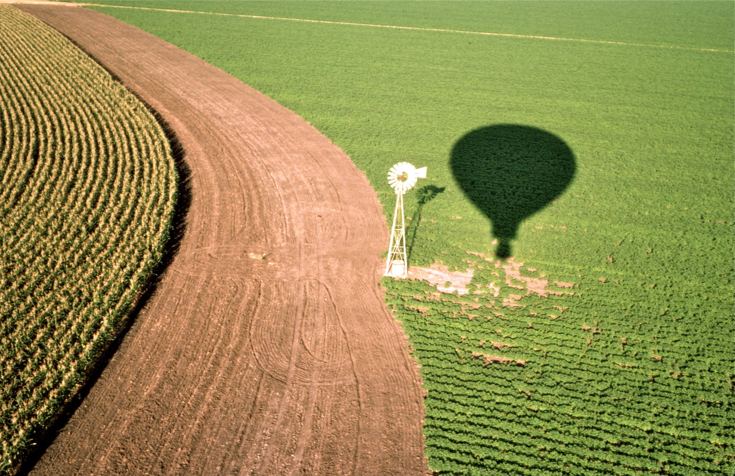 LloydCates-windmill&shadow-1987.jpg