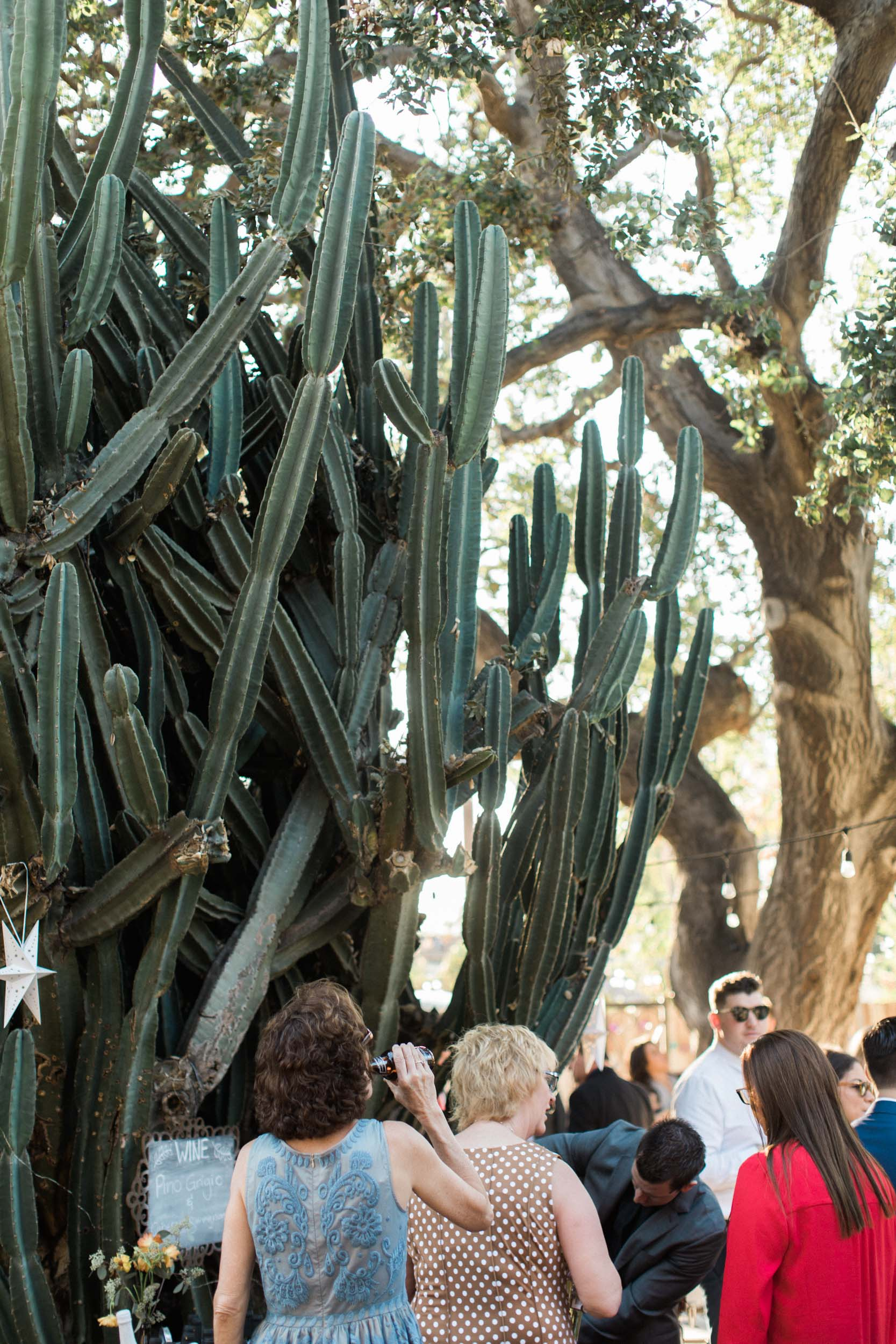 BKM-Photography-Highland-Park-Los-Angeles-Backyard-DIY-Wedding-0089.jpg