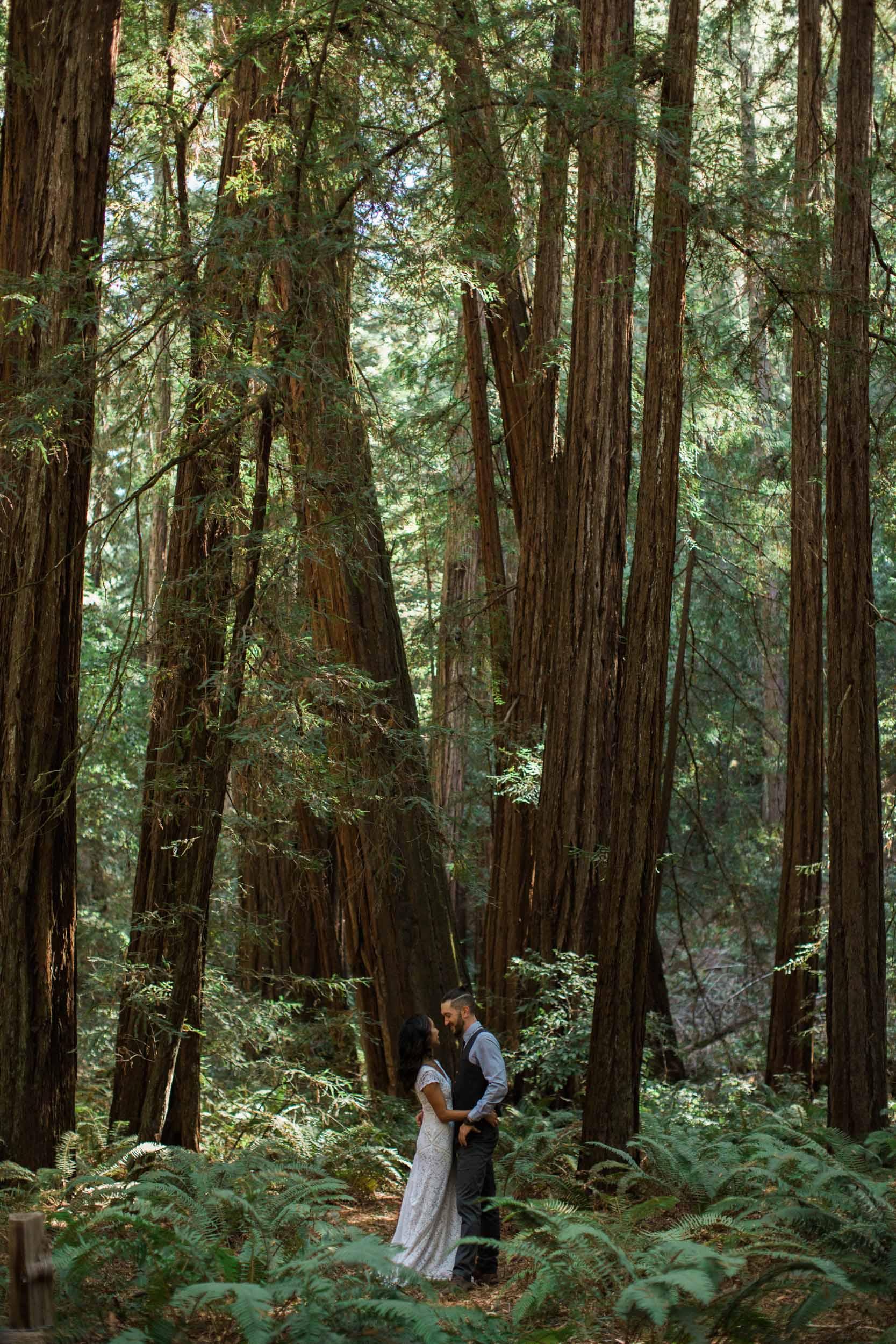 BKM-Photography-Russian-River-Redwoods-California-Wedding-Photographer-1050-2.jpg