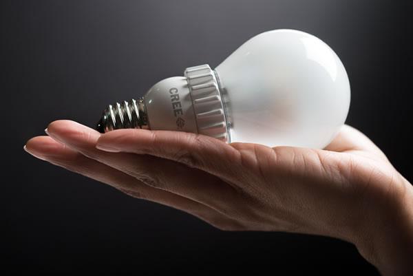 Cree-LED-light-bulb-in-palm-of-hand.jpg