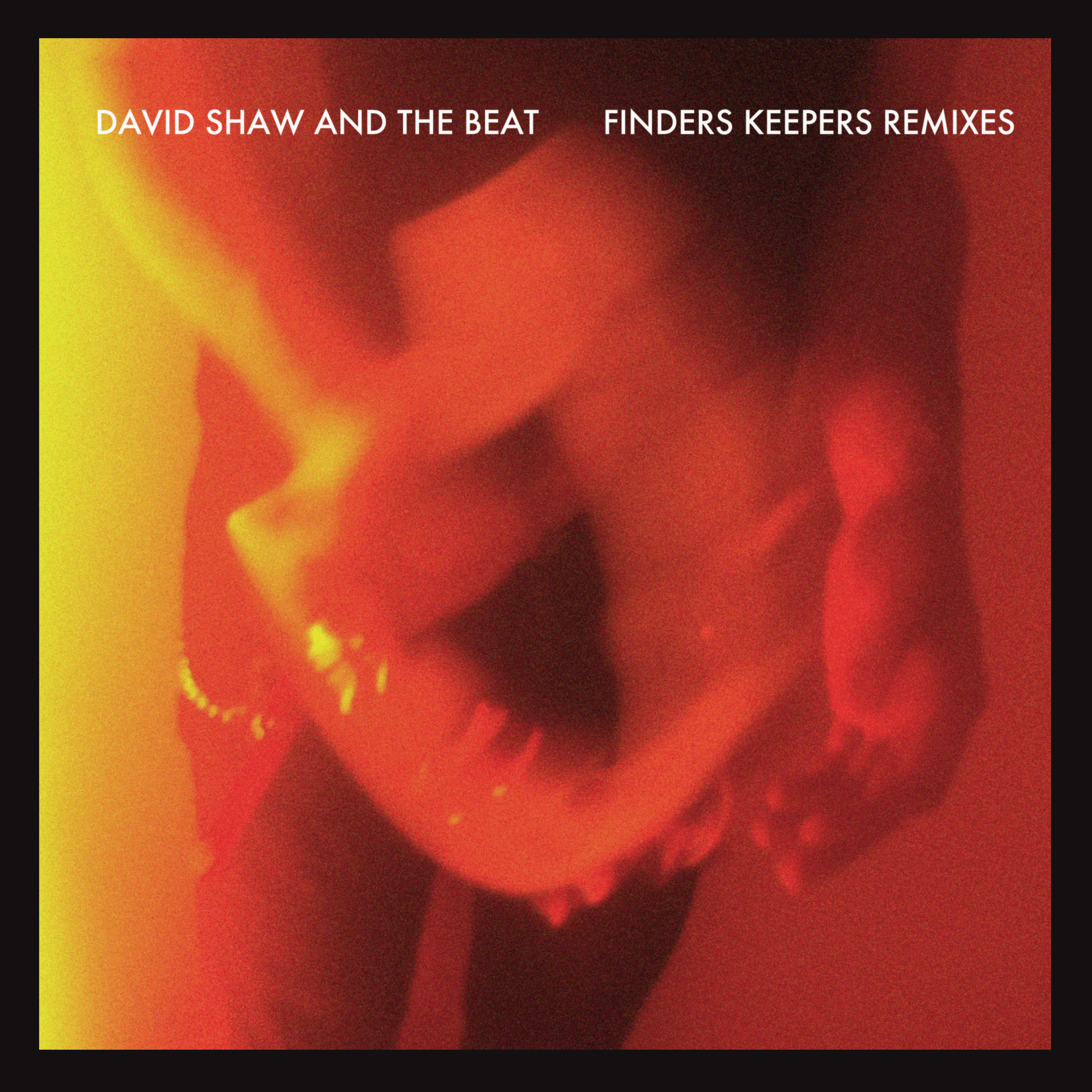 Finders Keepers Remixes - David Shaw