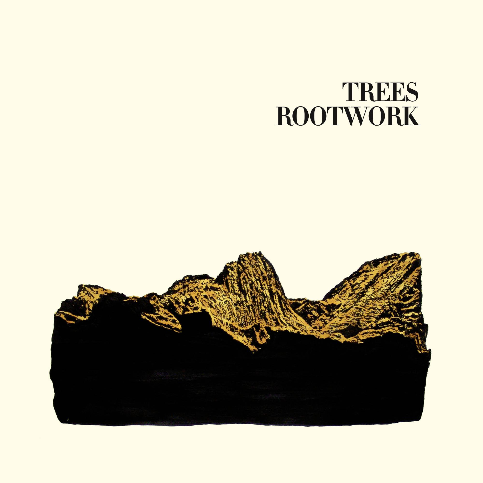 Trees_Rootwork.jpg