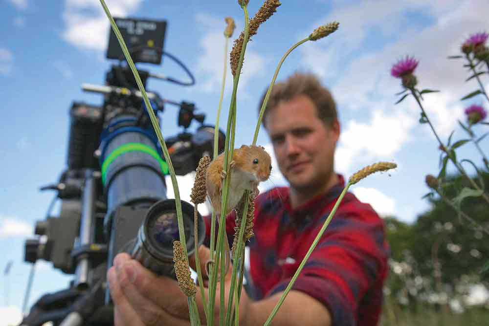 DOP Jonathan Jones and his Harvest Mouse.