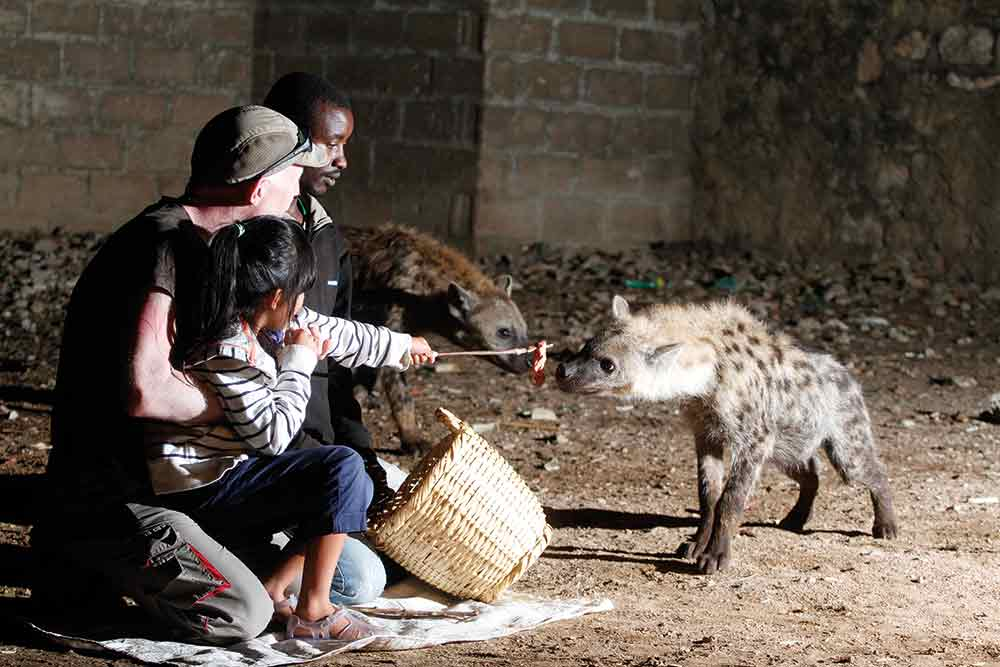 To encourage the audience to engage with an animal's story,a filmmaker can invite them to be either on its side or against it. These Hyenas were part of the 'Cities' episode of Planet Earth II.