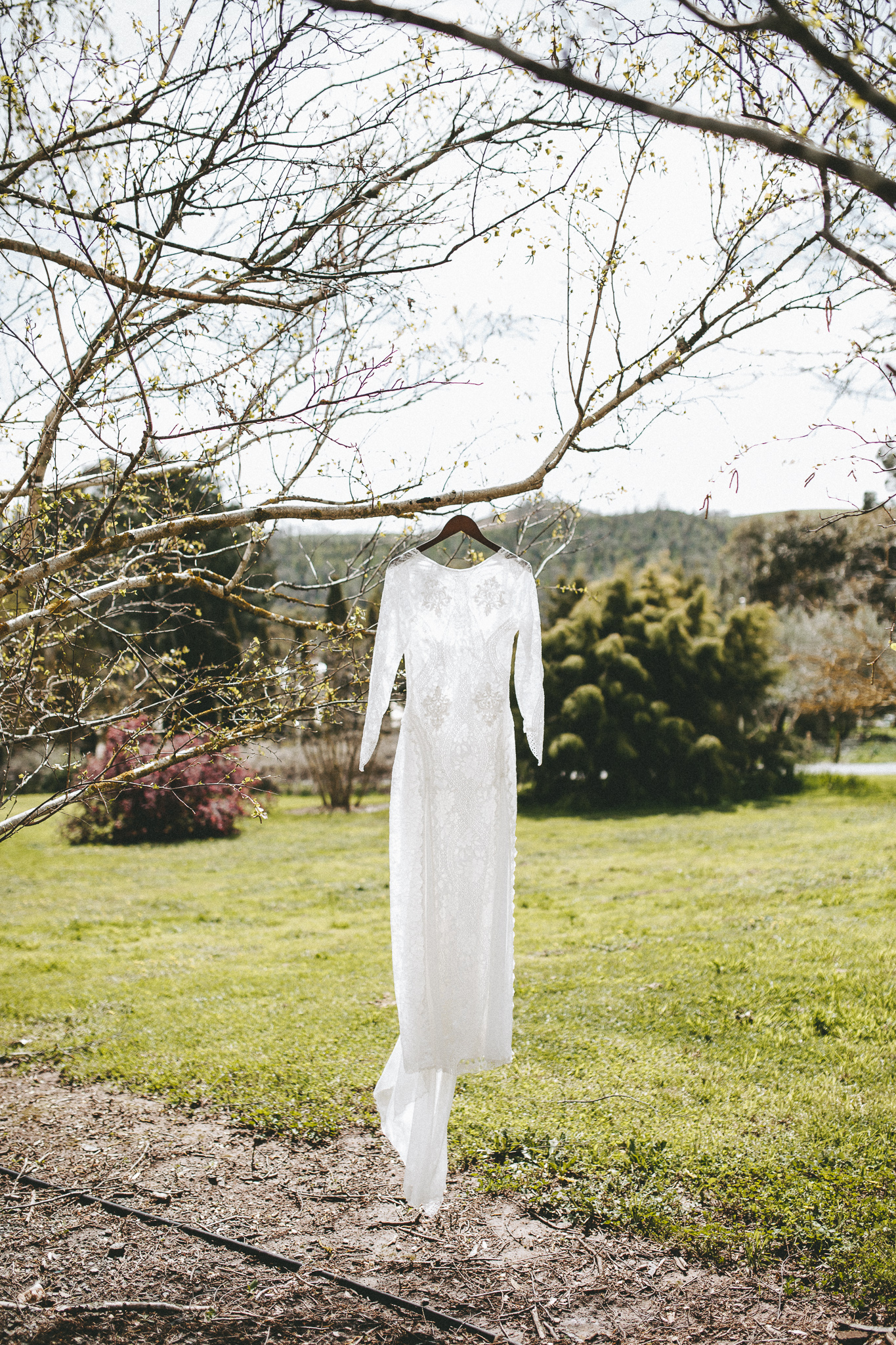christopher morrison_adelaide hills wedding_ andy + teegan_16_9571.jpg