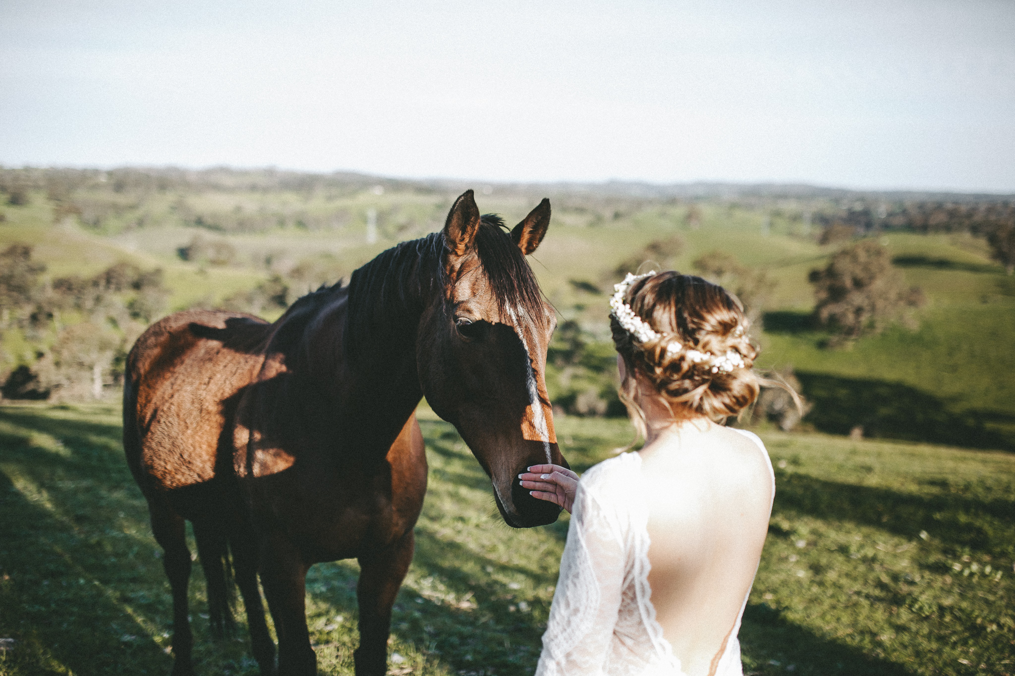 christopher morrison_adelaide hills wedding_ andy + teegan_52_9860.jpg