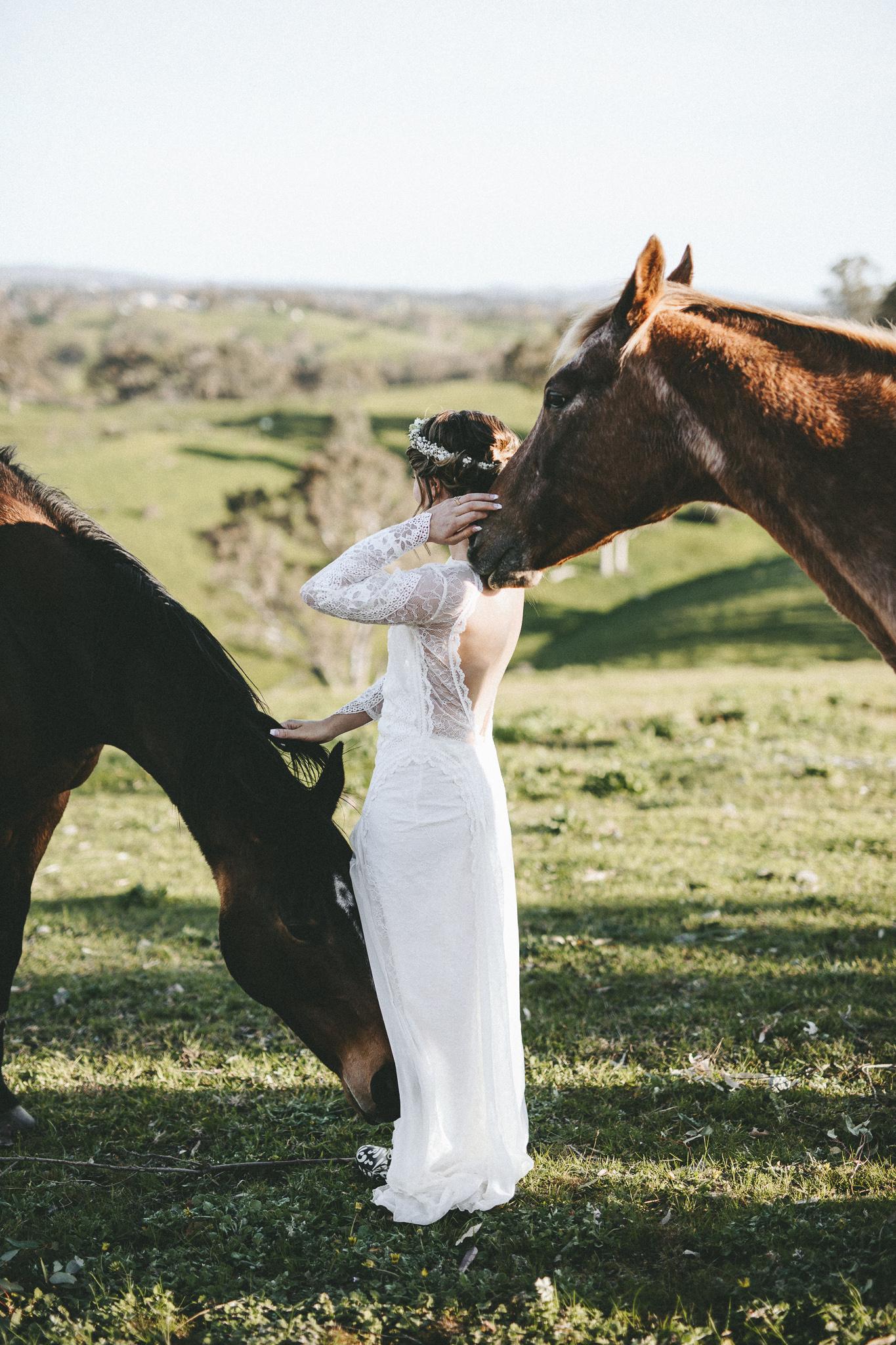 christopher morrison_adelaide hills wedding_ andy + teegan_54_0756.jpg