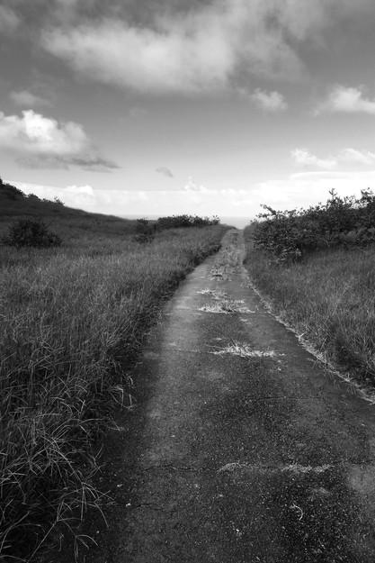 The Long Road (Hana)