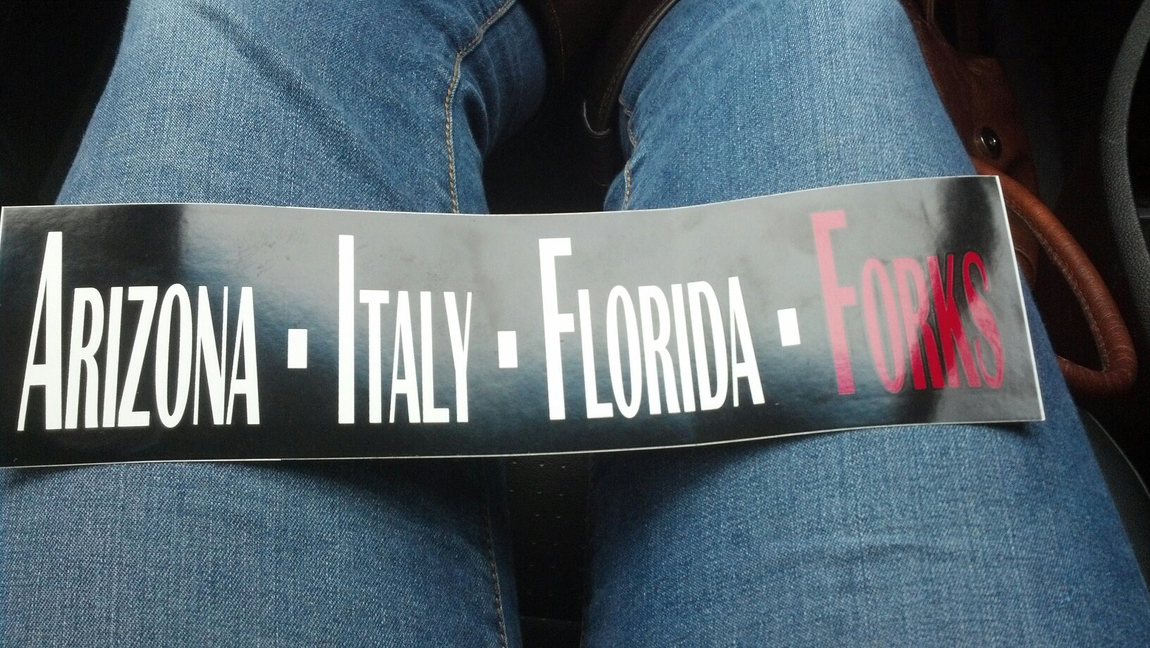 TwilightBumperSticker