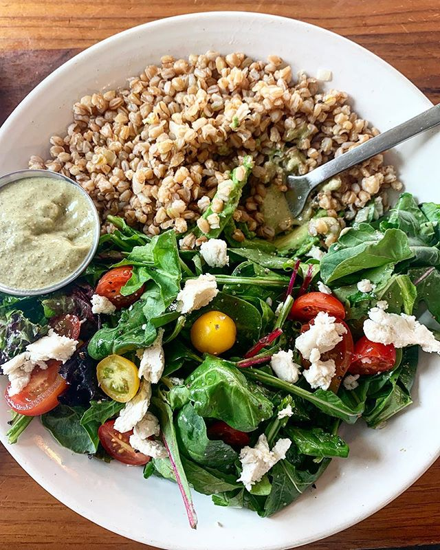 """Hello 👋🏻 to my favorite farro bowl with added mixed greens, avo, and dairy-free ricotta cheese. Even better is the green goddess dressing that you pour over the entire dish. 🤪Thank you @loftycoffeeco for putting care and thought and craft into your plant- based menu options. So often restaurants don't do this. They just """"leave off the cheese"""" or """"remove the bacon"""". Not this place; they actually cater to us folks who want to eat healthy and actually enjoy our food. 😂🍽🙌🏼 . . . . . . . . . #plantbasedpower #wholefoodplantbased #dairyfreelife #dairyfreefood #eatwelllivewell #veganfamily #veganeating #whatveganscook #plantbasedlifestyle #plantbasednutrition #veganfoodlover #givemethatplant #fitfoodiefinds #plantpoweredathlete #veggiepower #veganfoodspot #allergenfree #rawvegansofig #rawfoods #cleaneatingideas #veganfit #fitfoodies #greenfood #livingthelife"""