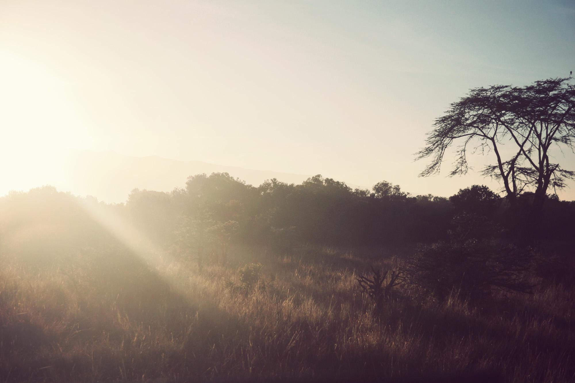 Perfect Kenyan morning