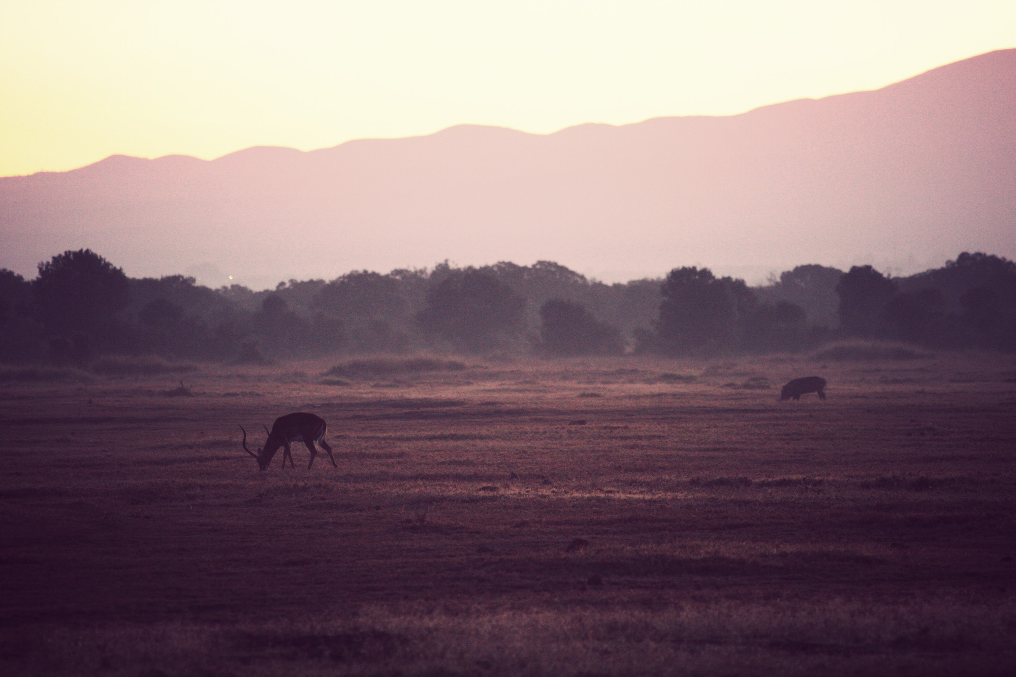 Day02_Sweetwater_Epic-Sunrise_02.jpg