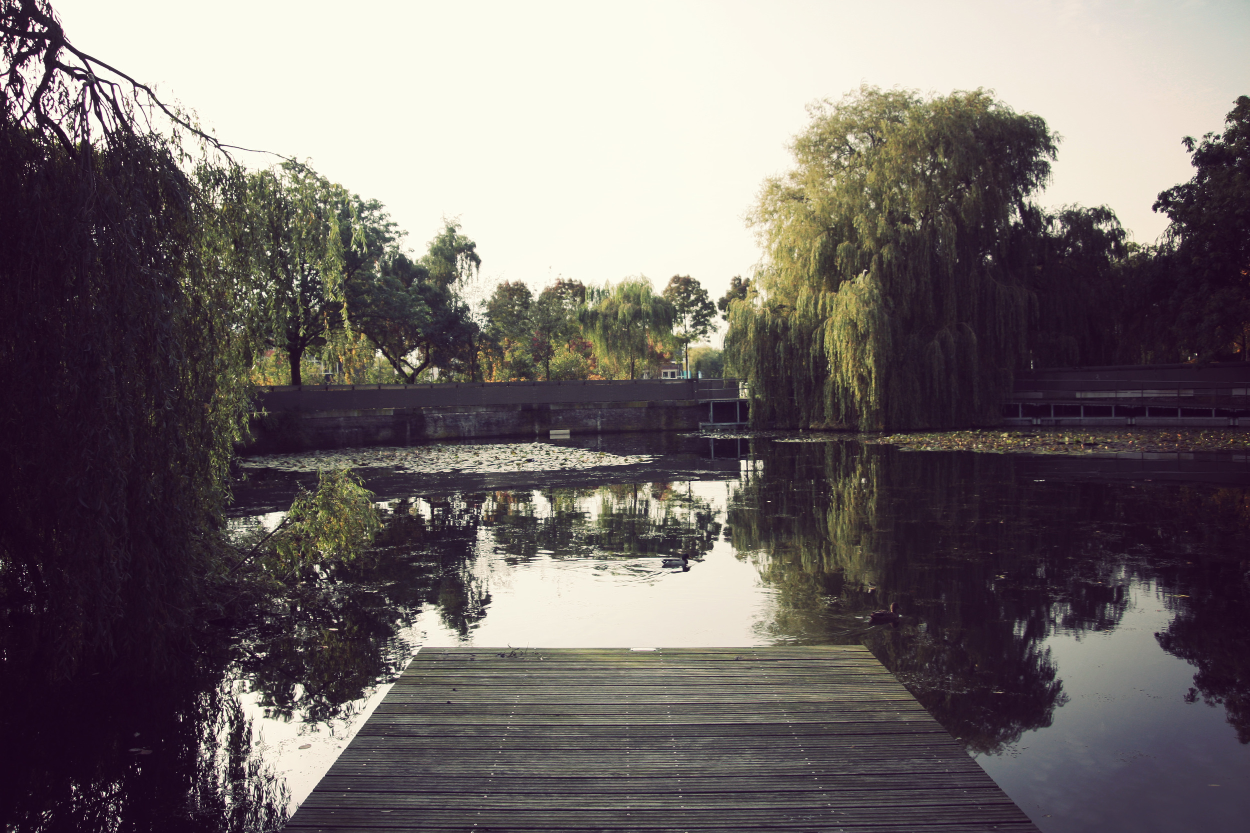 Cultuurpark-Westergasfabriek_06.jpg