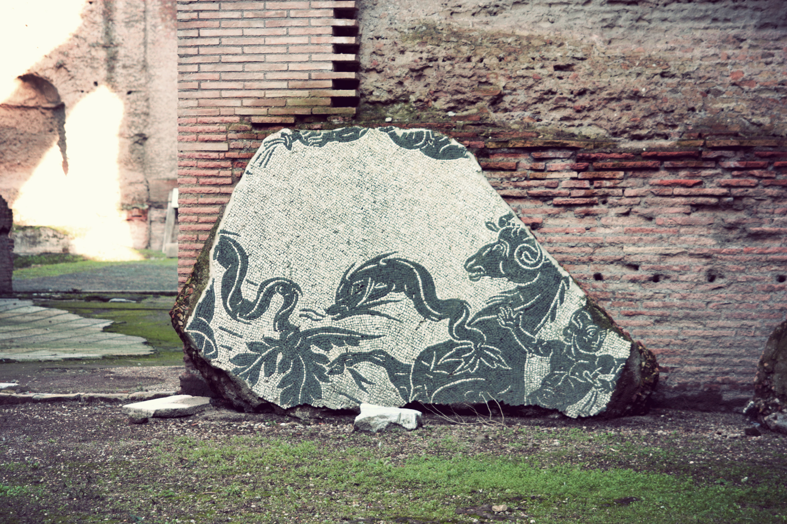 Baths-of-Caracalla_13.jpg