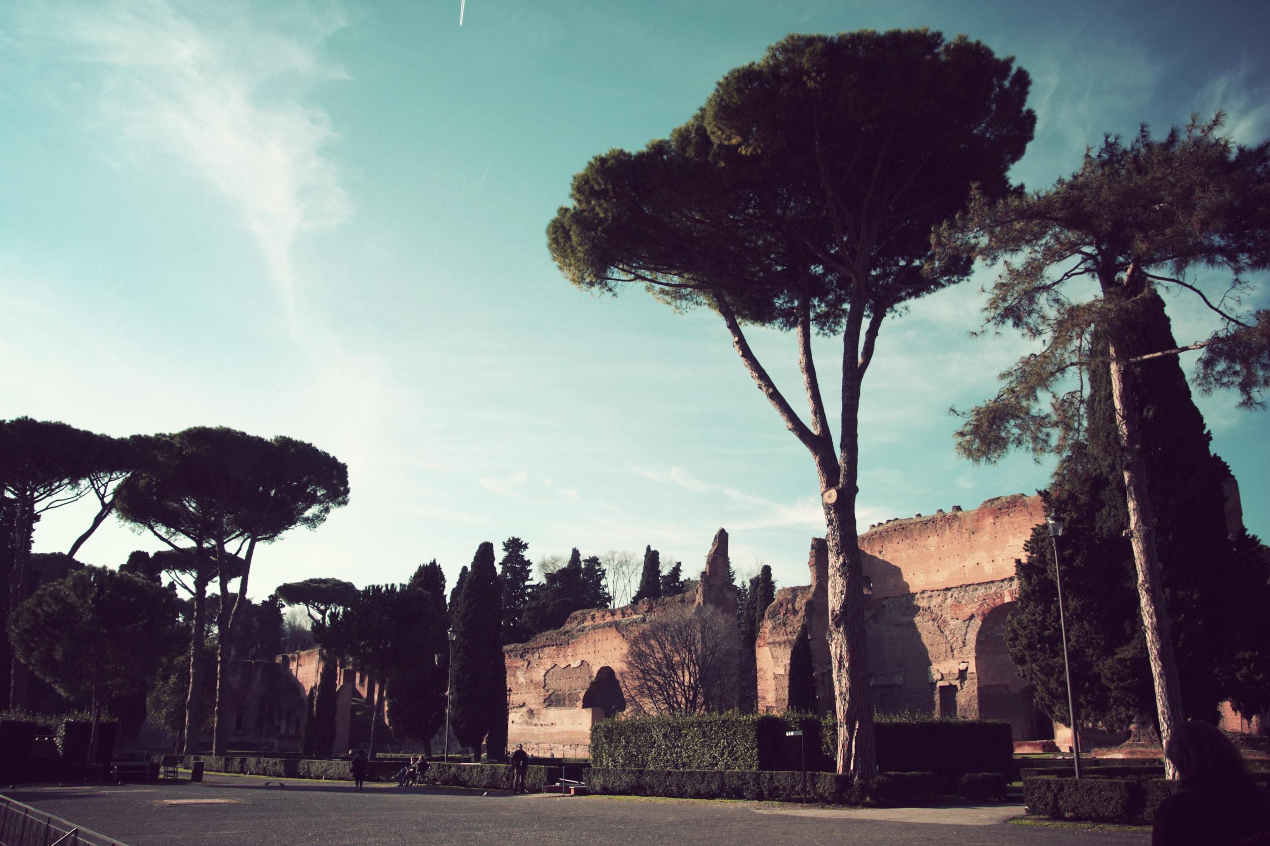 Baths-of-Caracalla_20.jpg