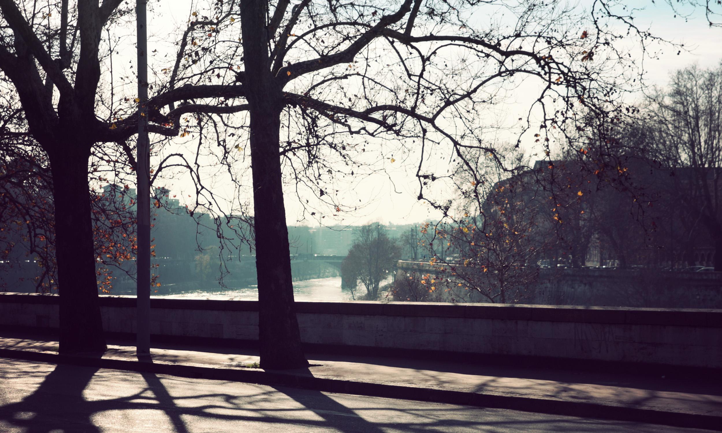 Tiber_02.jpg