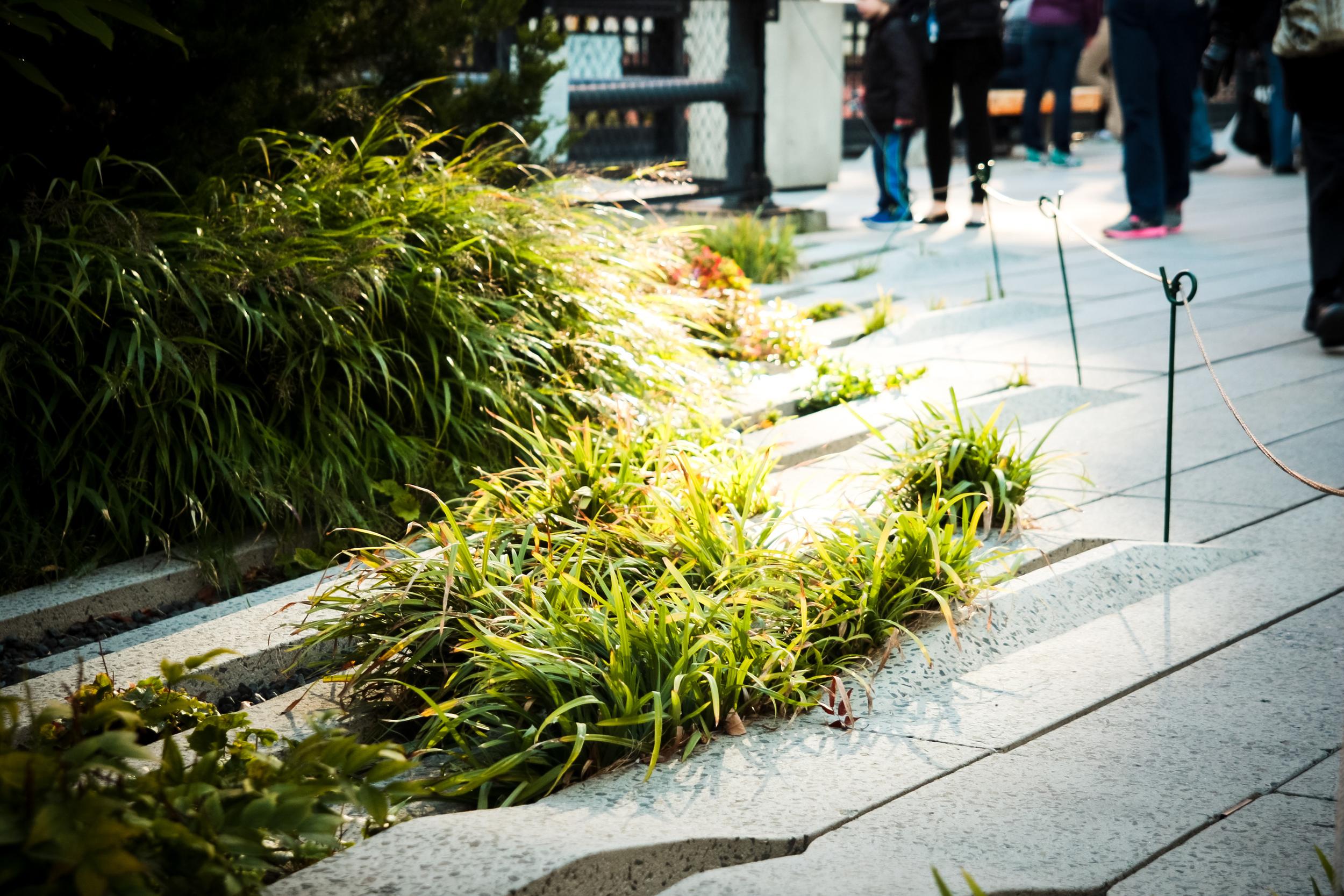NYC_Day1-07.jpg