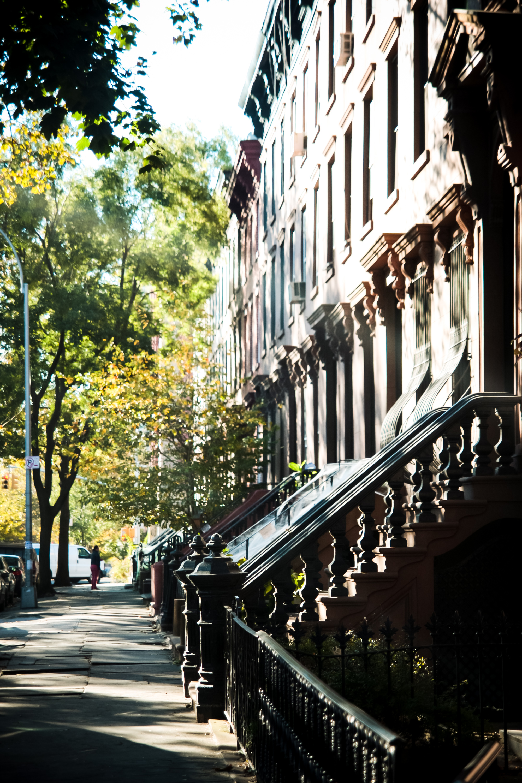 NYC_Day3-02.jpg
