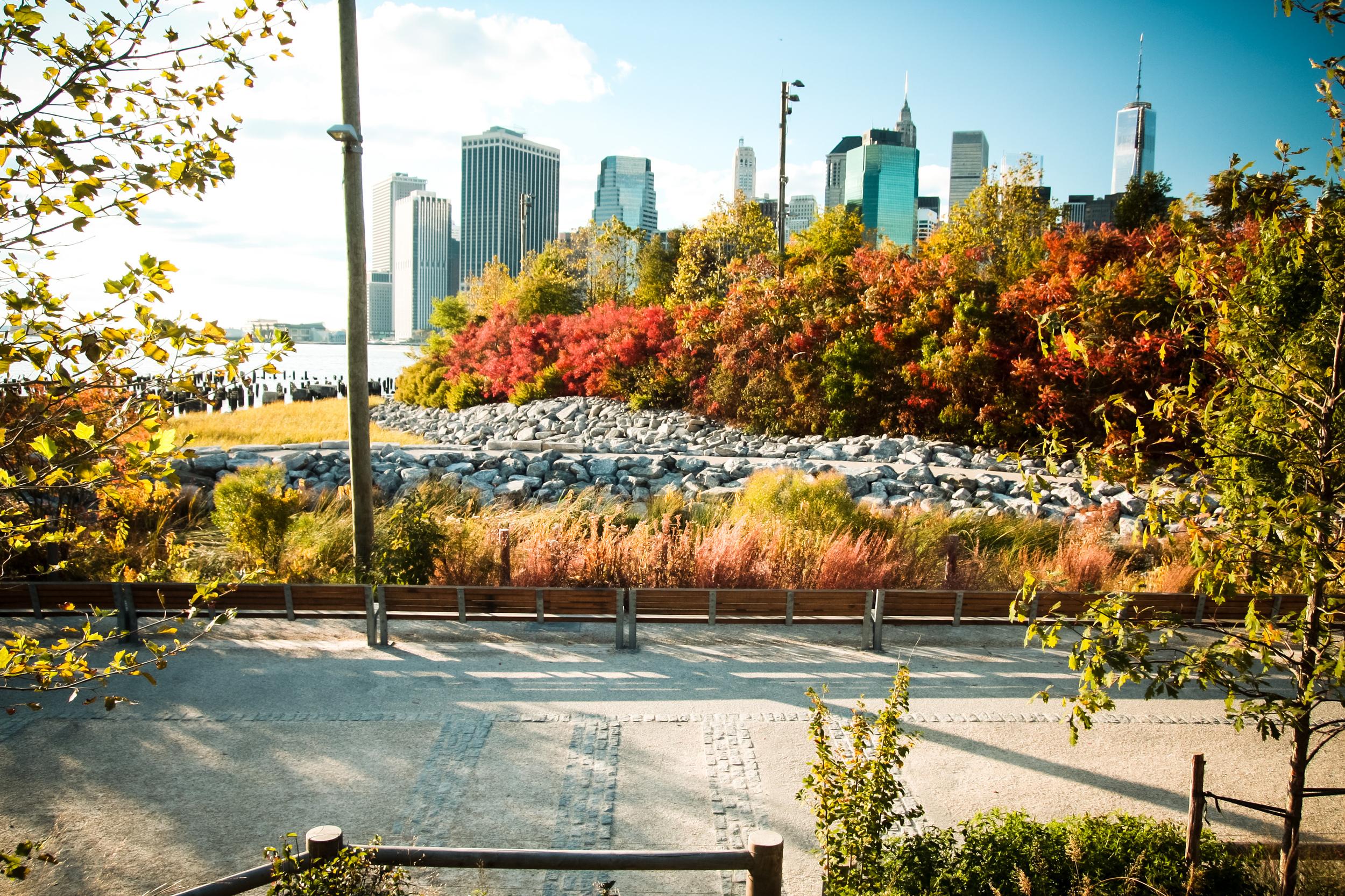 NYC_Day2-30.jpg