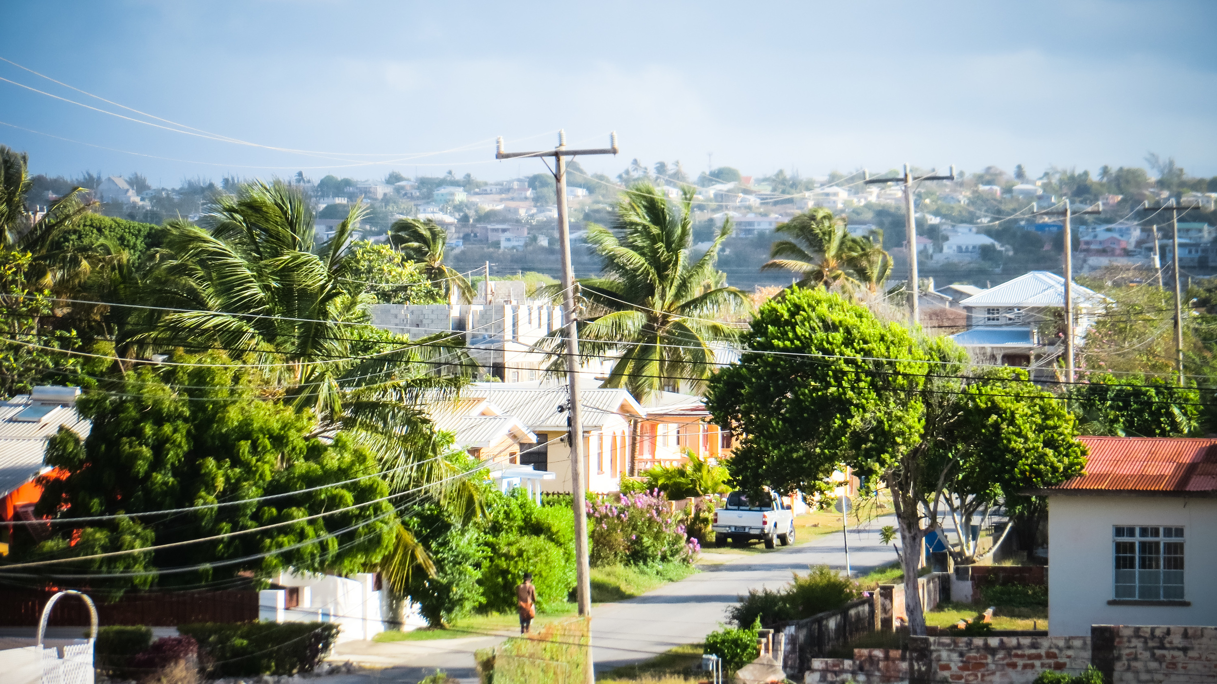 Local streetscape: well kept homes and tidy tropical trees.