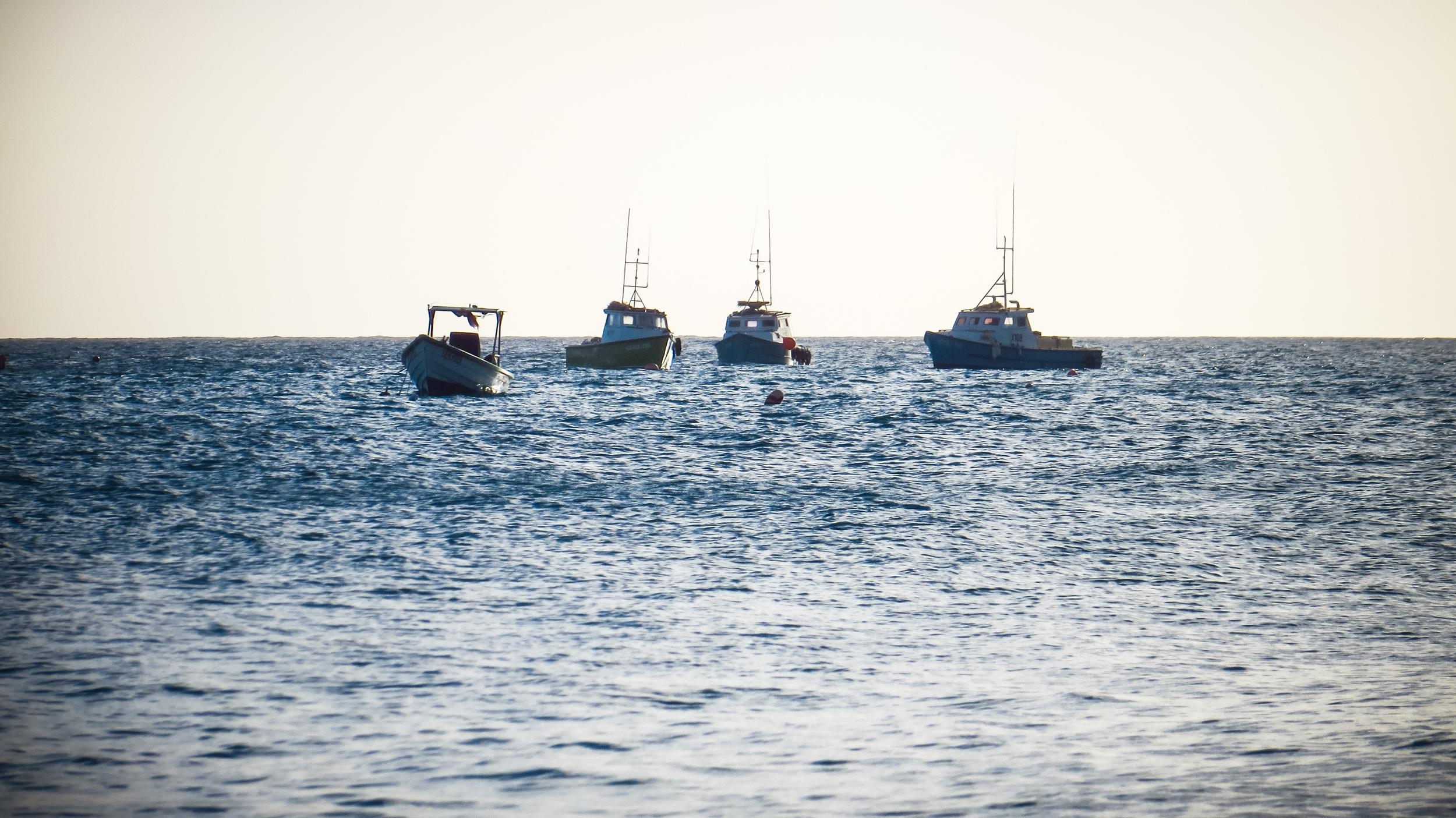 The fishing boats at Oistins