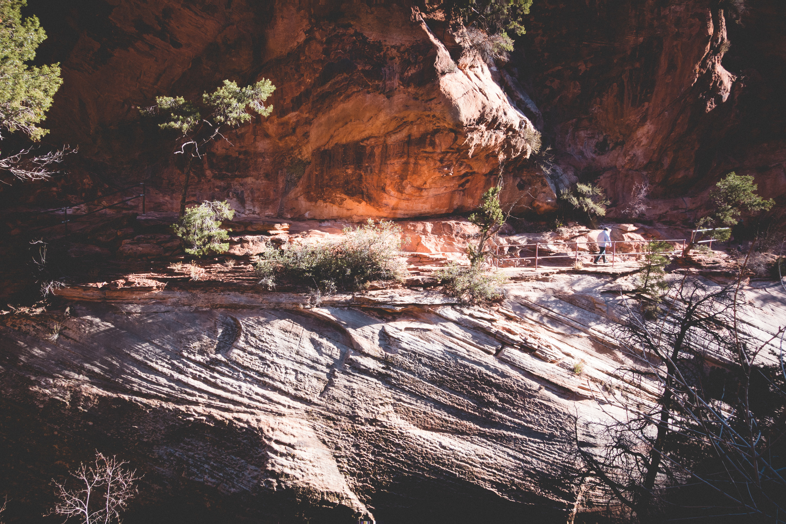 Zion-National-Park-4.jpg