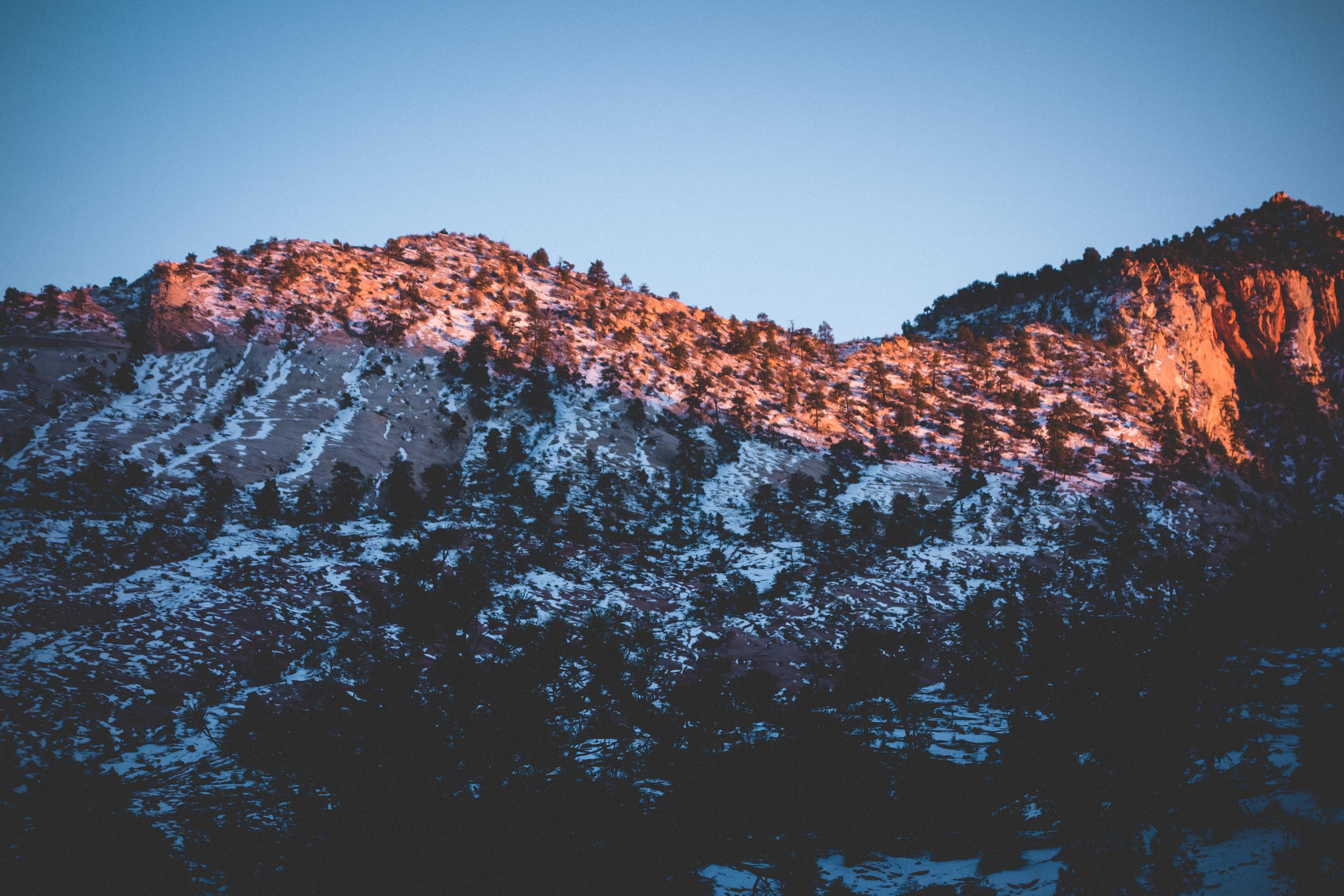 Zion-National-Park-45.jpg