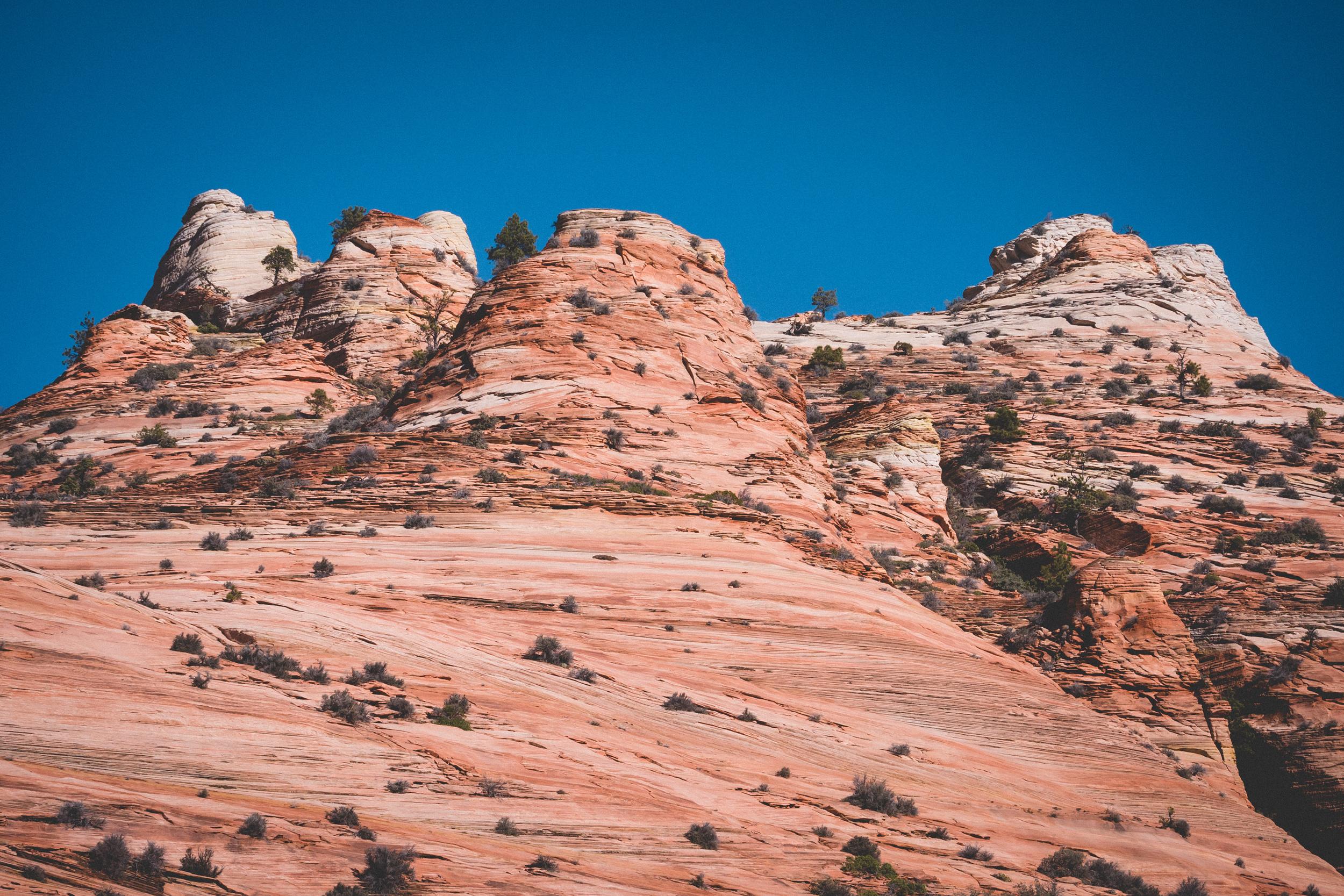 Zion-National-Park-53.jpg