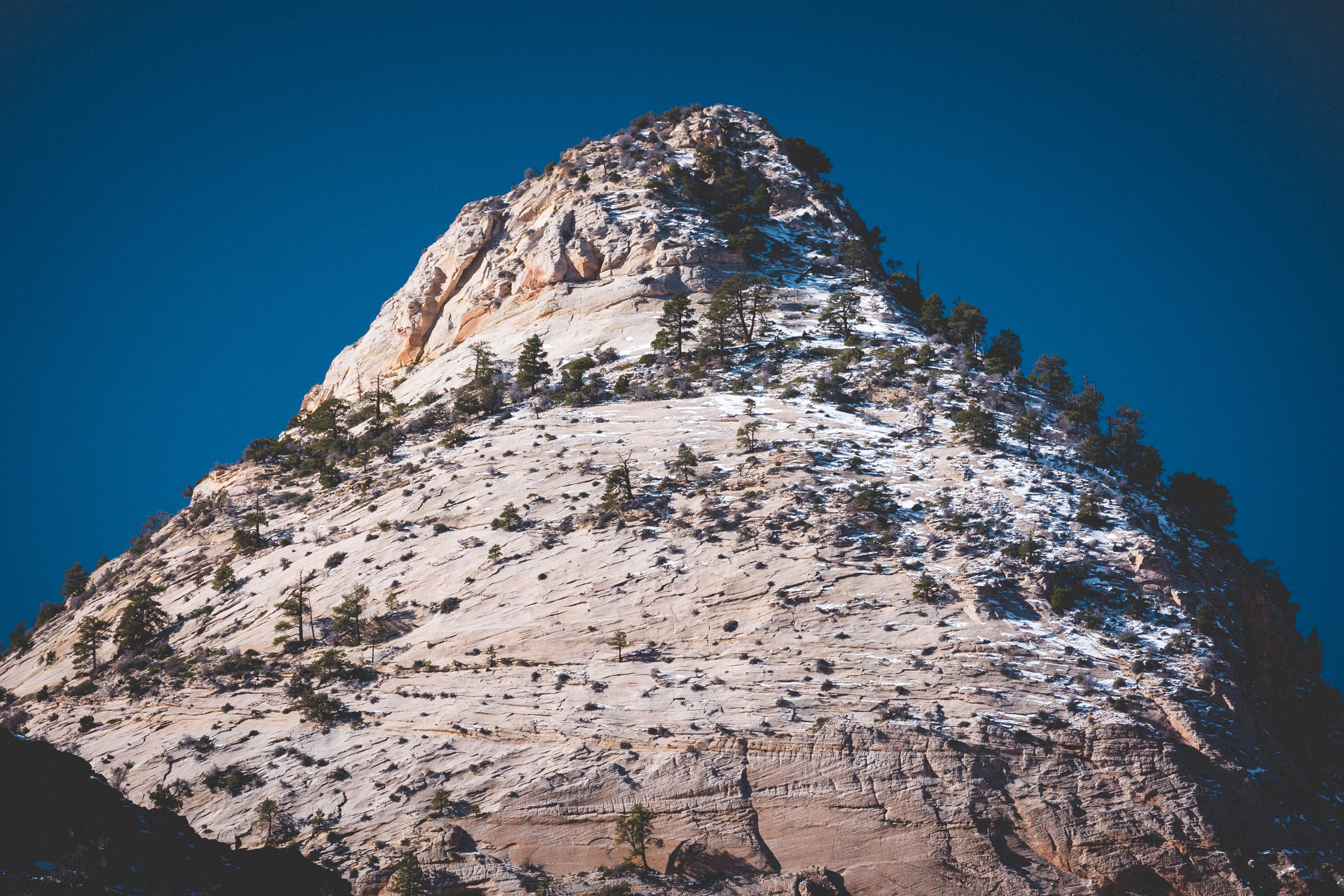 Zion-National-Park-64.jpg