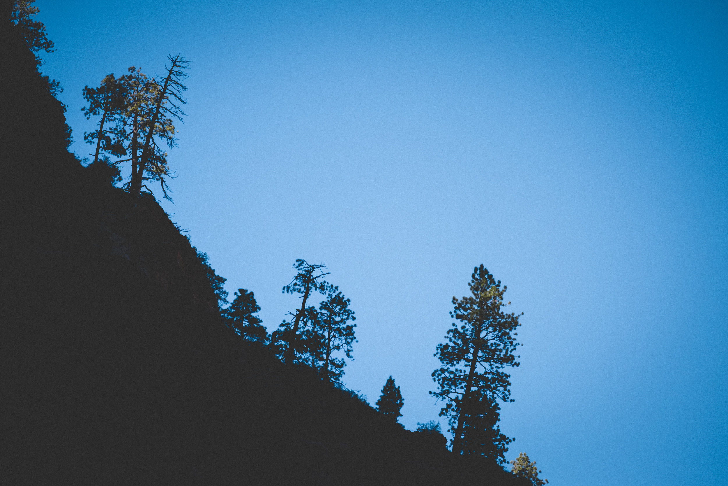 Zion-National-Park-84.jpg