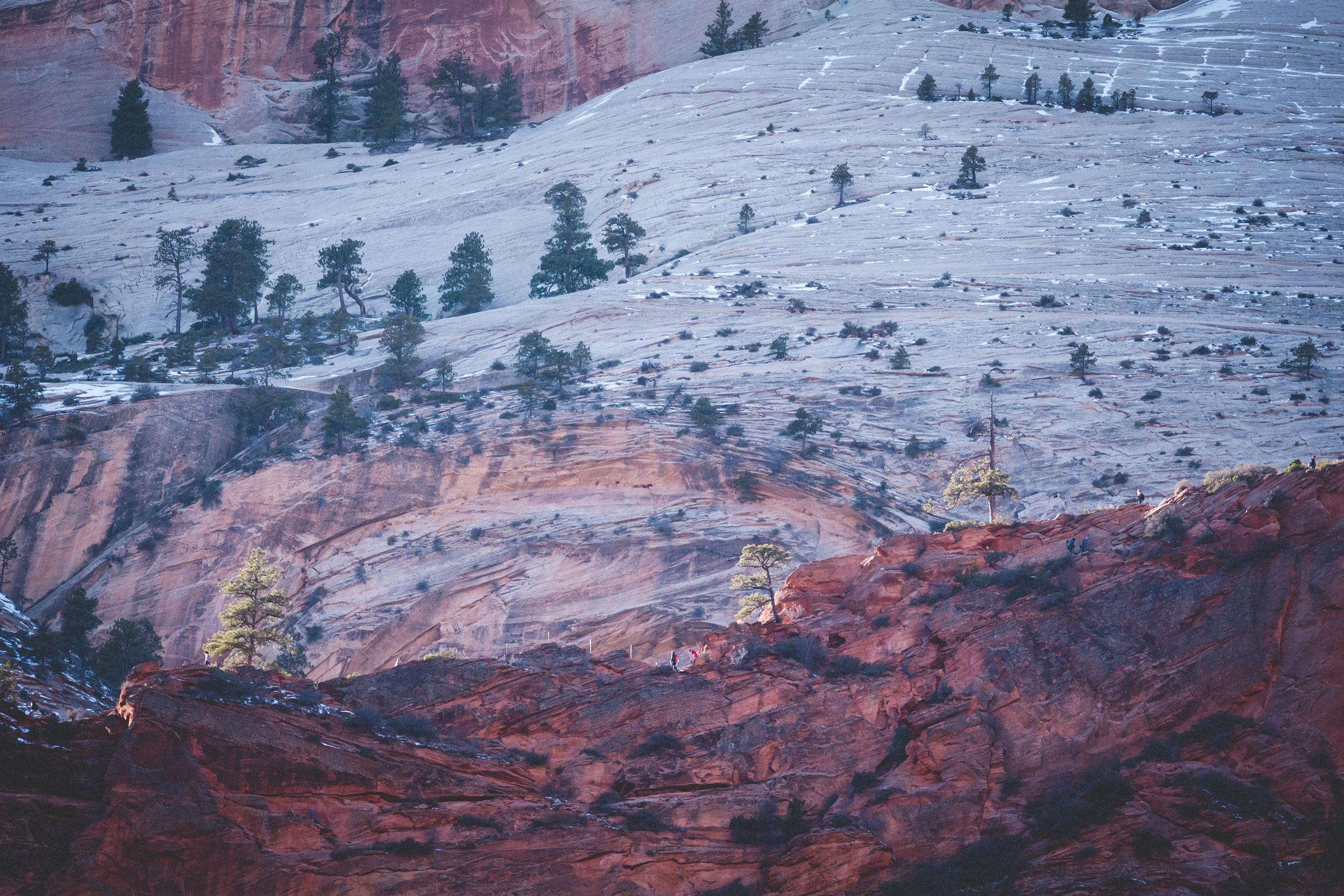 Zion-National-Park-83.jpg