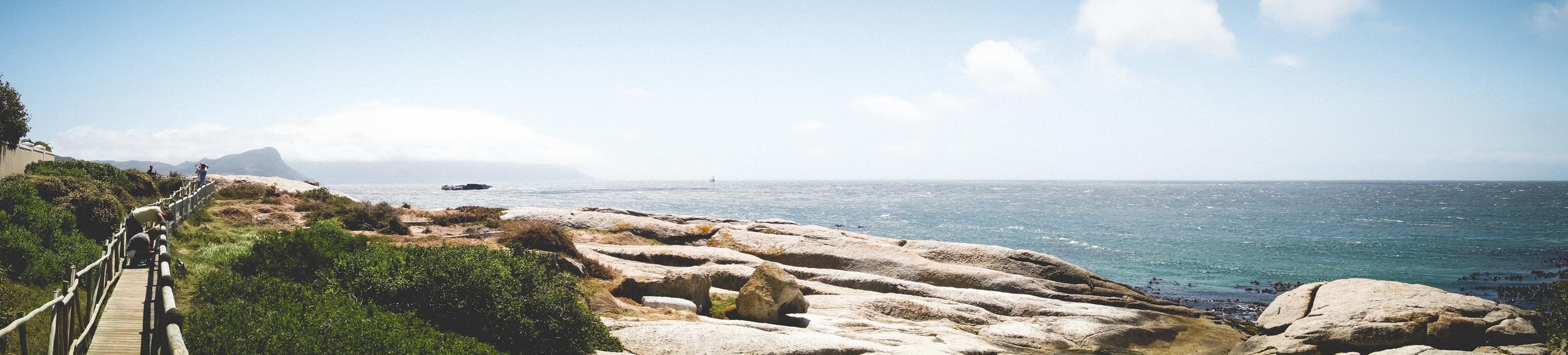 Boulders Beach Penguins-5.jpg