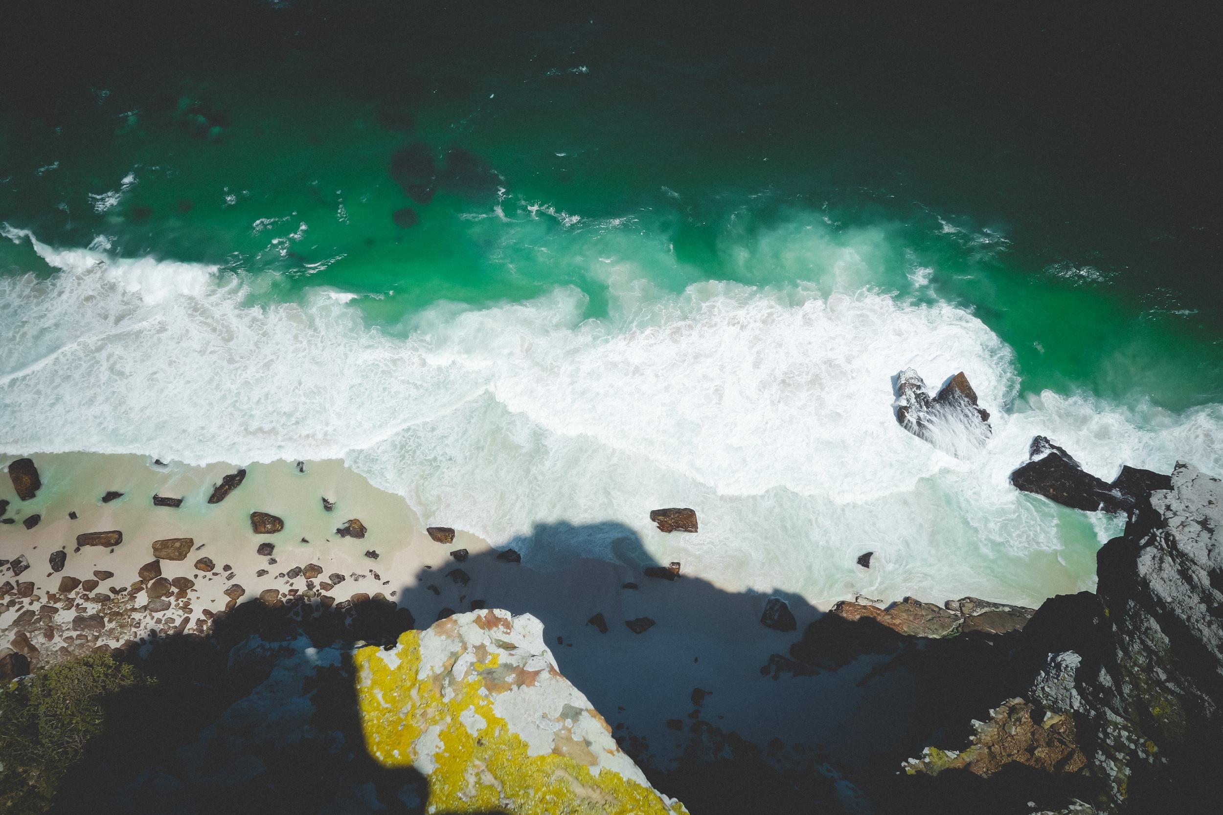 Cape Point Fynbos-13.jpg