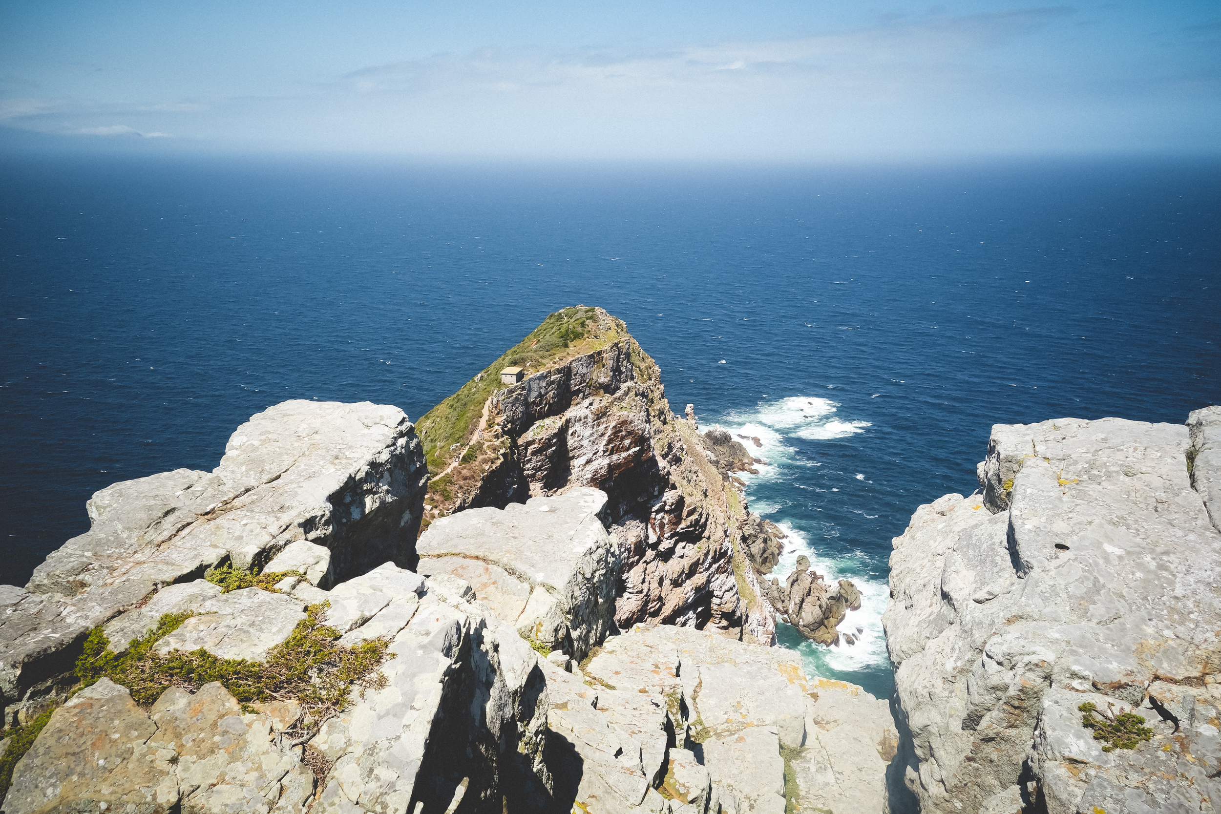 Cape Point Fynbos-15.jpg