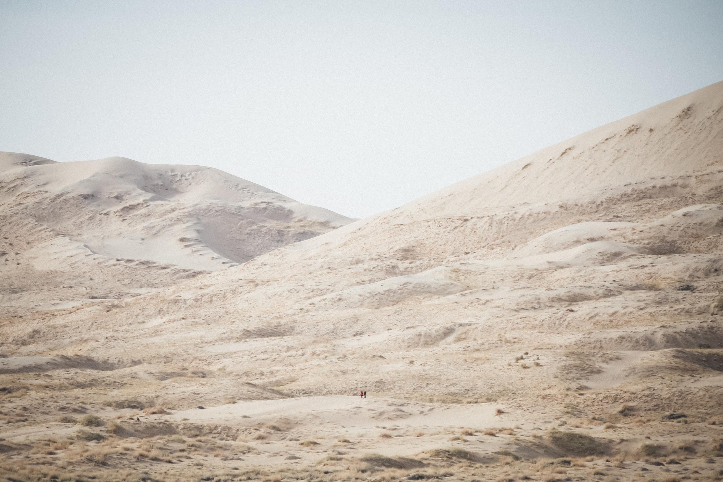 Mojave-Desert-15.jpg